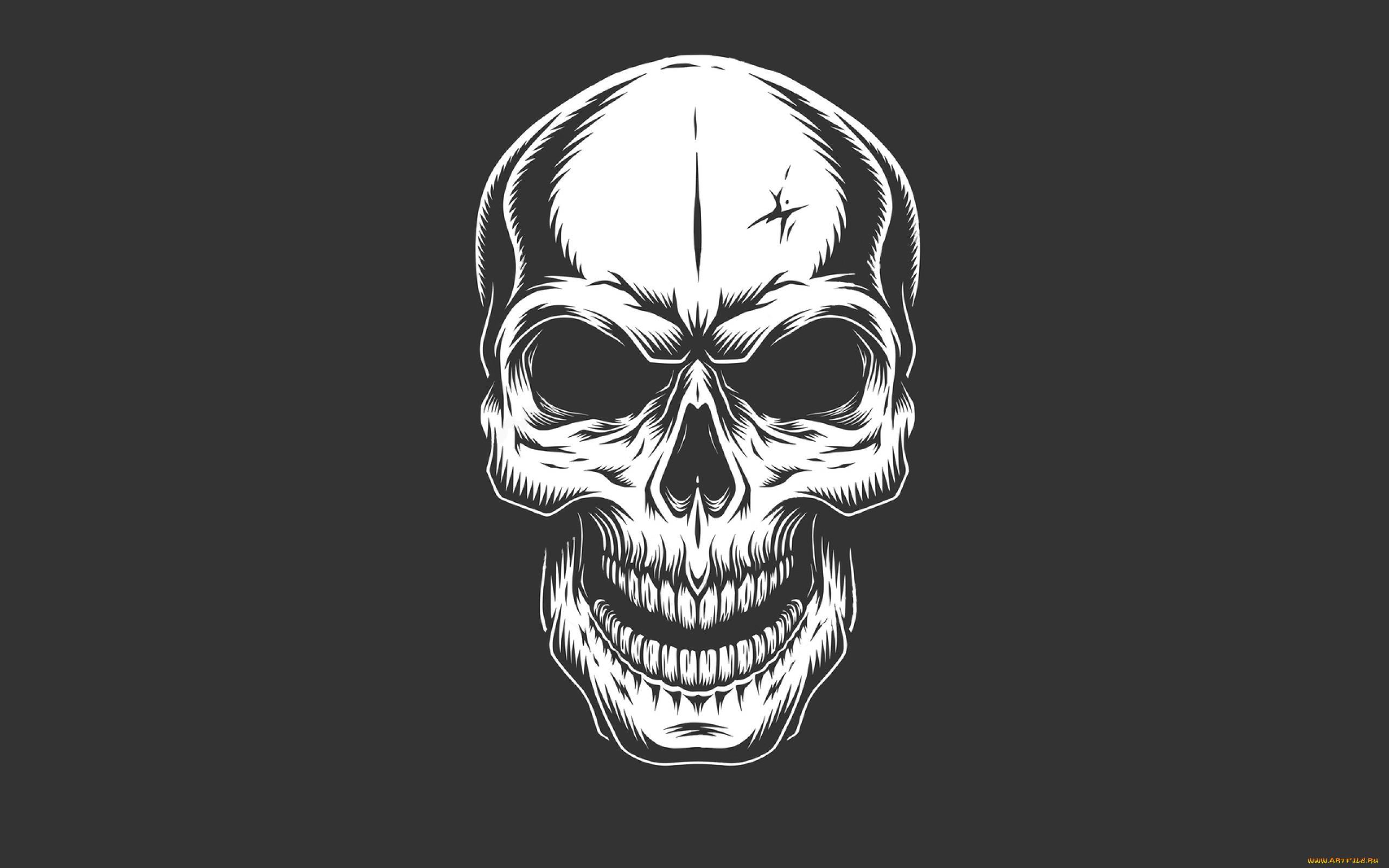 Wallpaper Skull Minimalism Simple Background