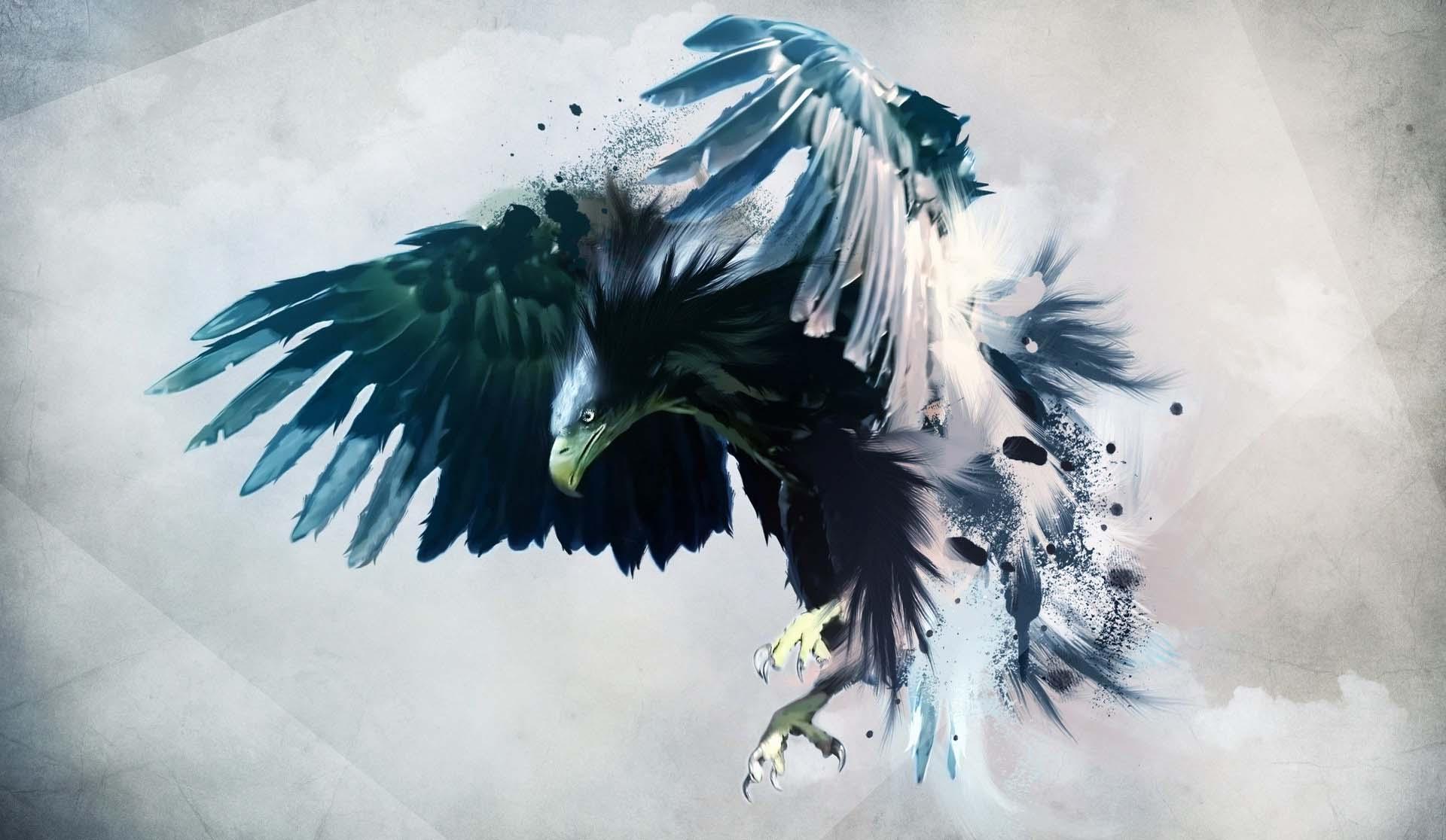 Wallpaper Sky Bird Of Prey Eagle Beak Tree Feather