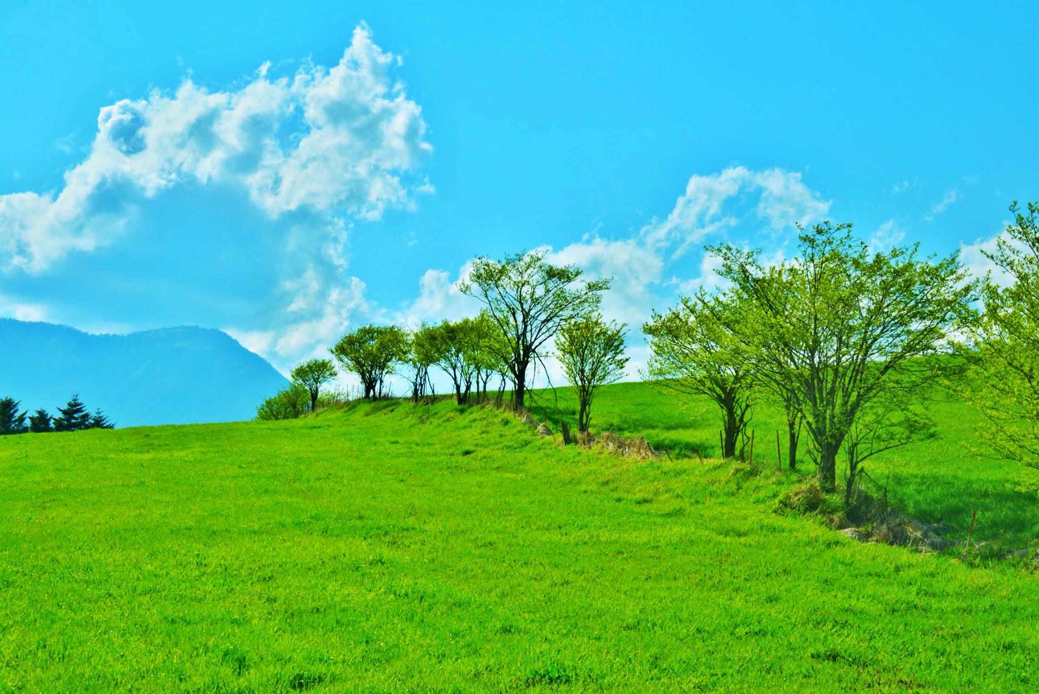 Download 880+ Wallpaper Pemandangan Alam Jepang HD Terbaik