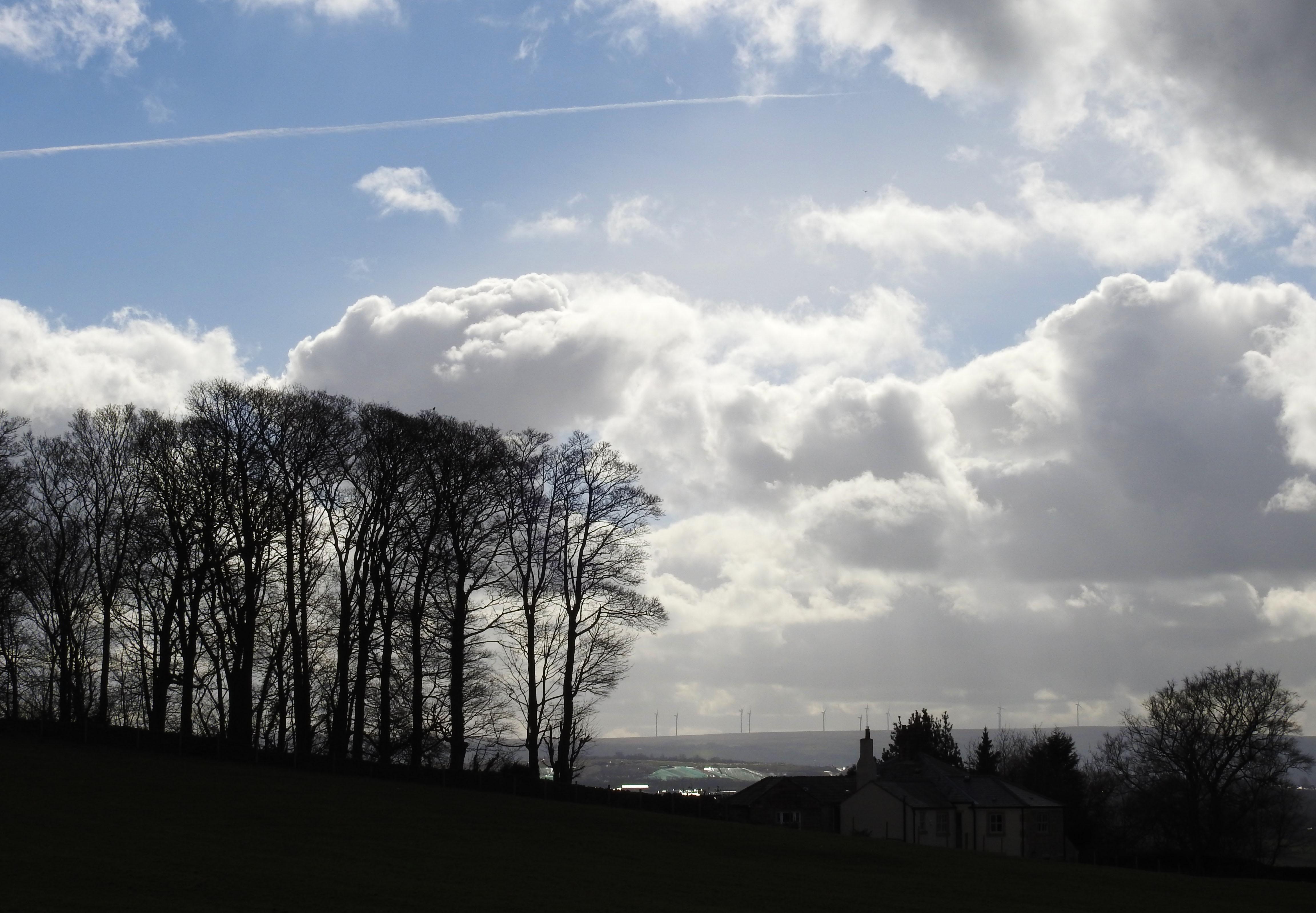 Hintergrundbilder Himmel Wolke Sonnenschein Bäume