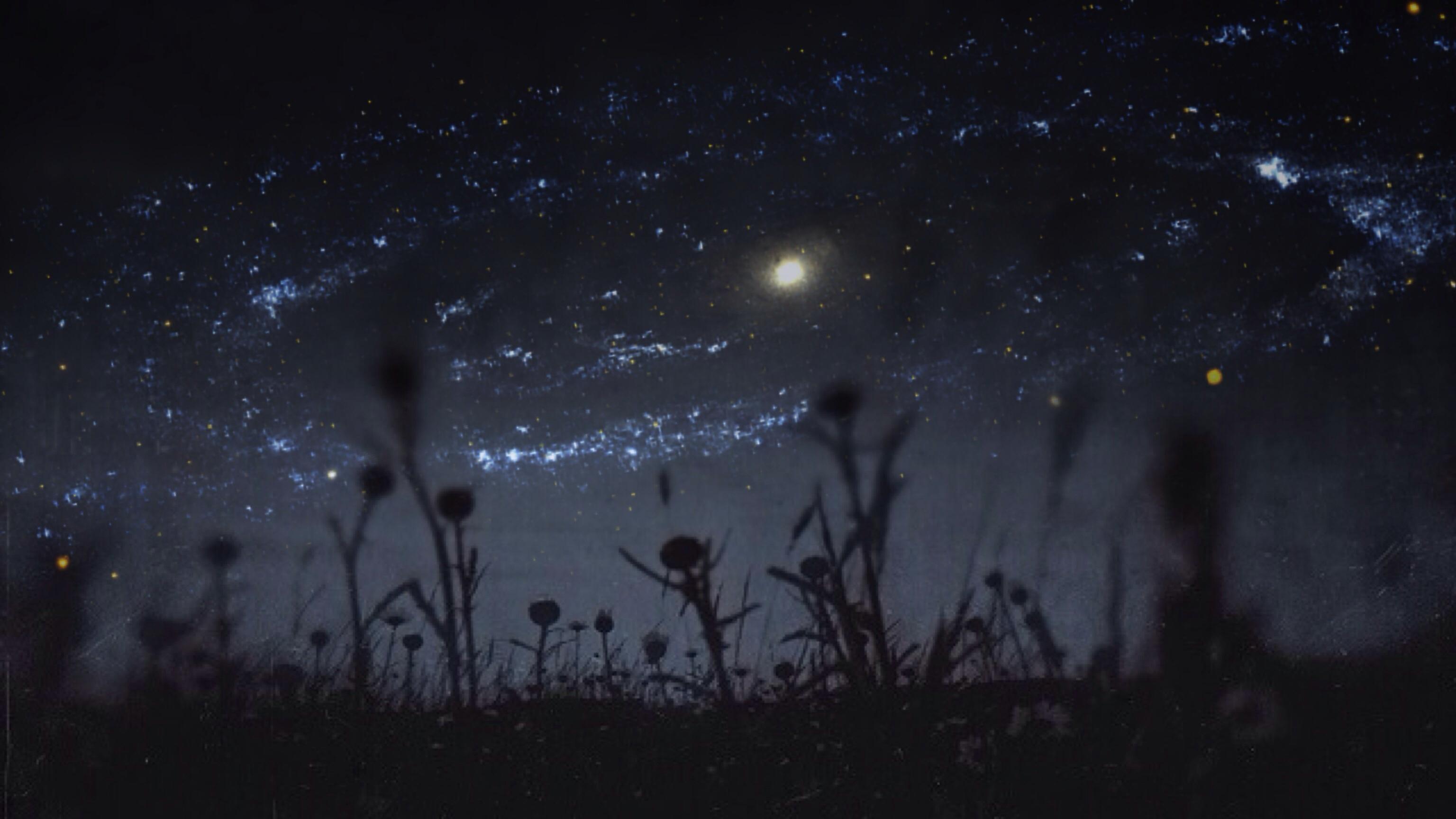 Sky Night Stars Dreamy Wildflowers Tadaa IPhone Atic Galazy Aliensky Pixlromatic Mextures