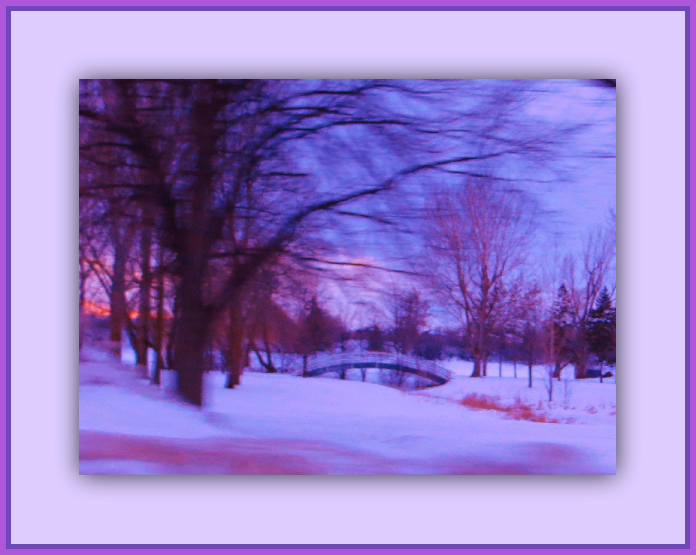 Masaüstü Gökyüzü Kış Mor Doğa Menekşe Kar Boyama Ağaç