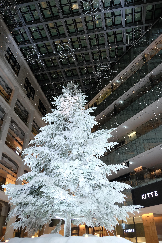 hintergrundbilder schnee winter weihnachtsbaum. Black Bedroom Furniture Sets. Home Design Ideas