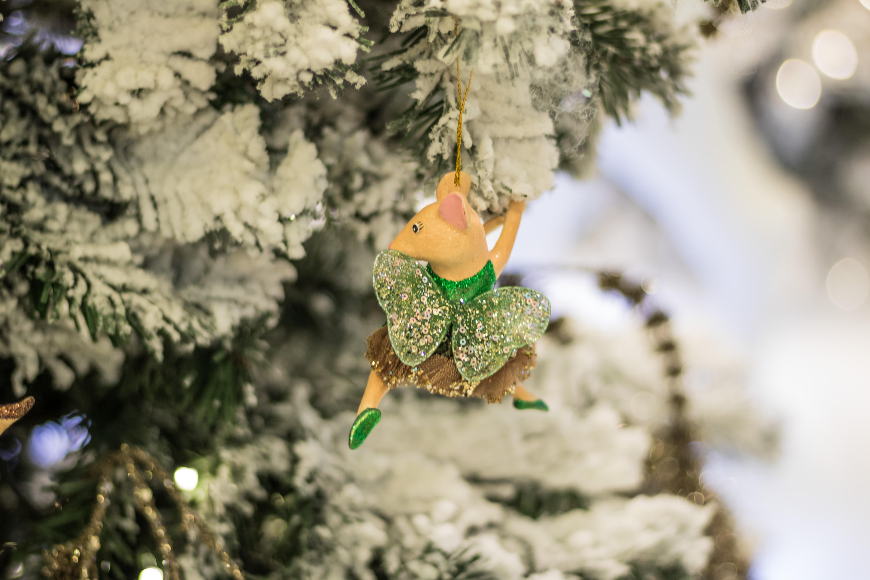 Weihnachtsbaum Ast.Hintergrundbilder Schnee Winter Ast Grün Deutschland