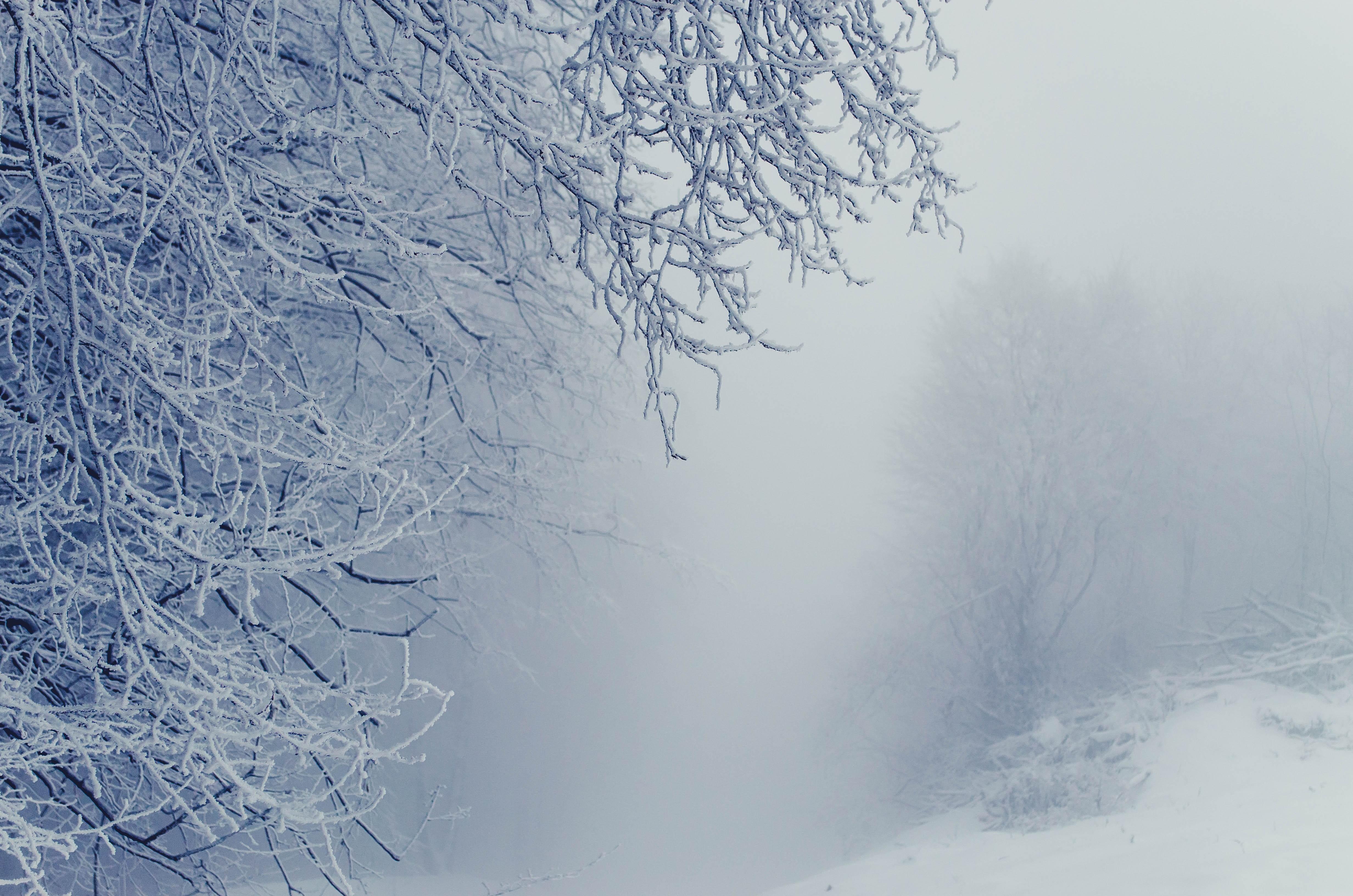 Места для зимних фотосессий в самаре этом совершенно