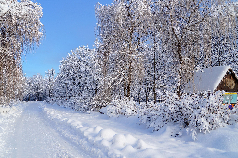 далеко всем фотография пейзаж зимушка студии ждут вас