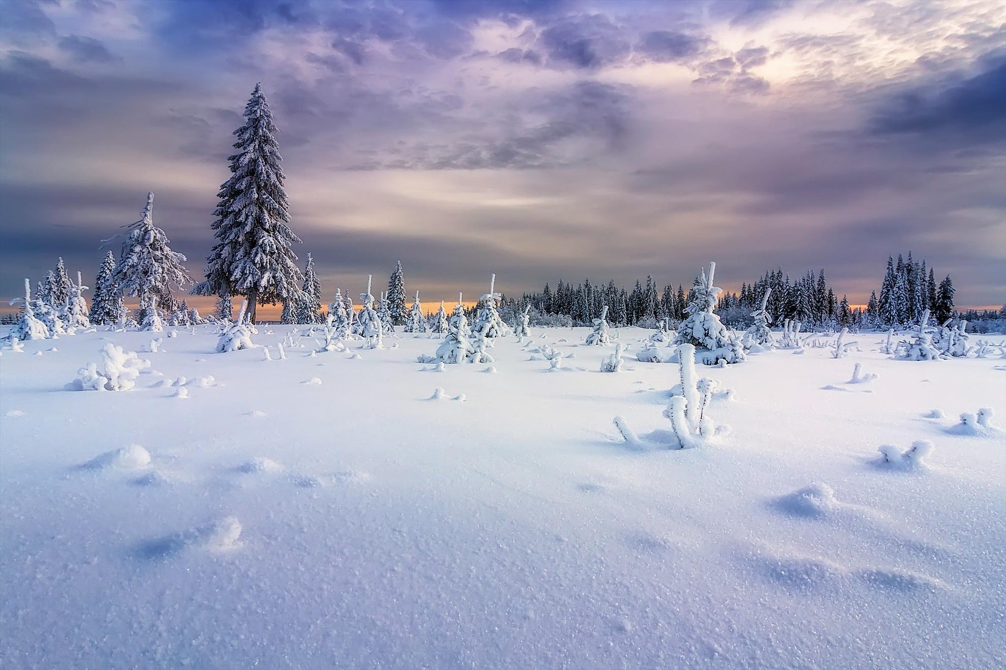 Фото зимы ночью идет снег все-таки