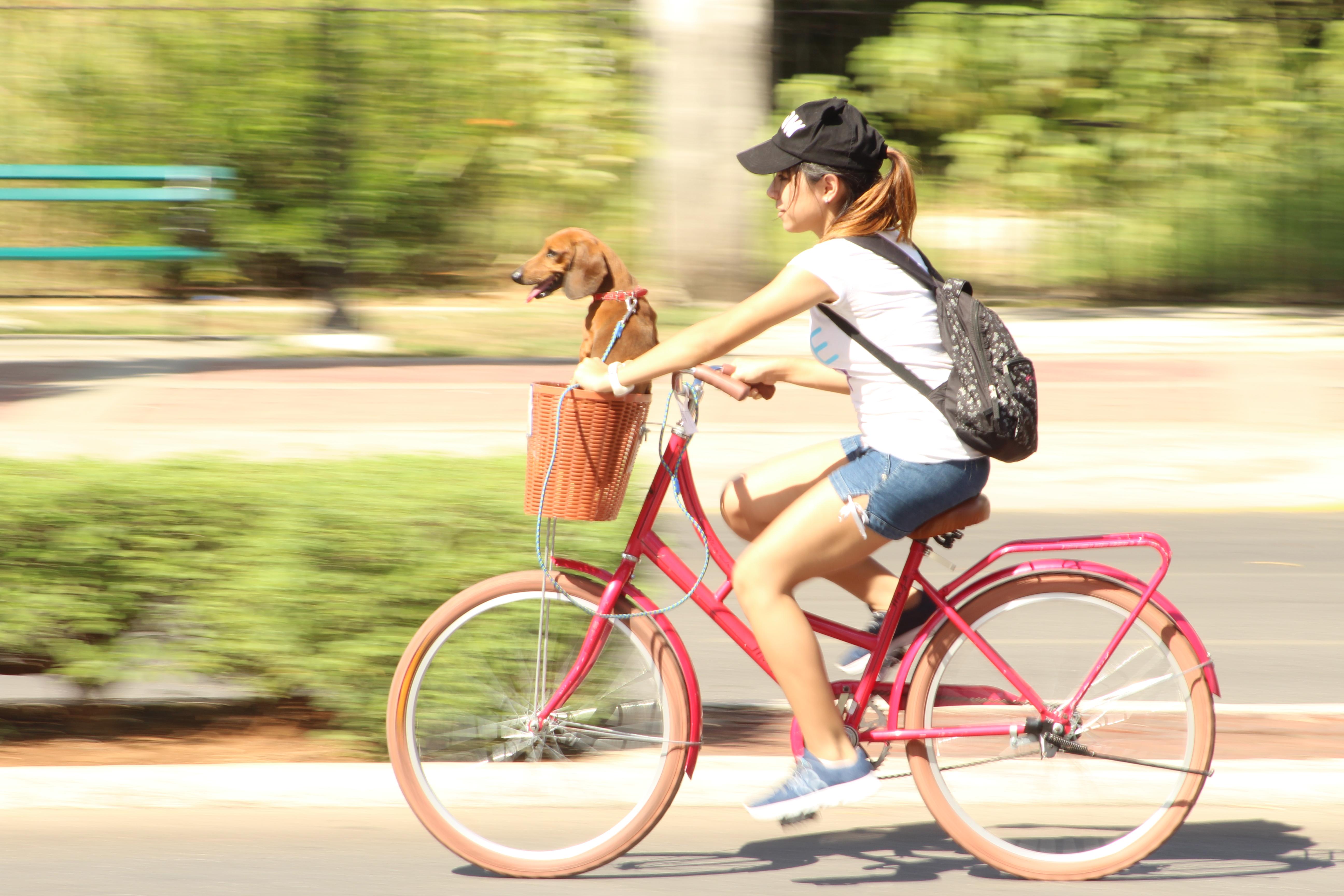 элитного я еду на велосипеде картинки для поэтому еще завершения