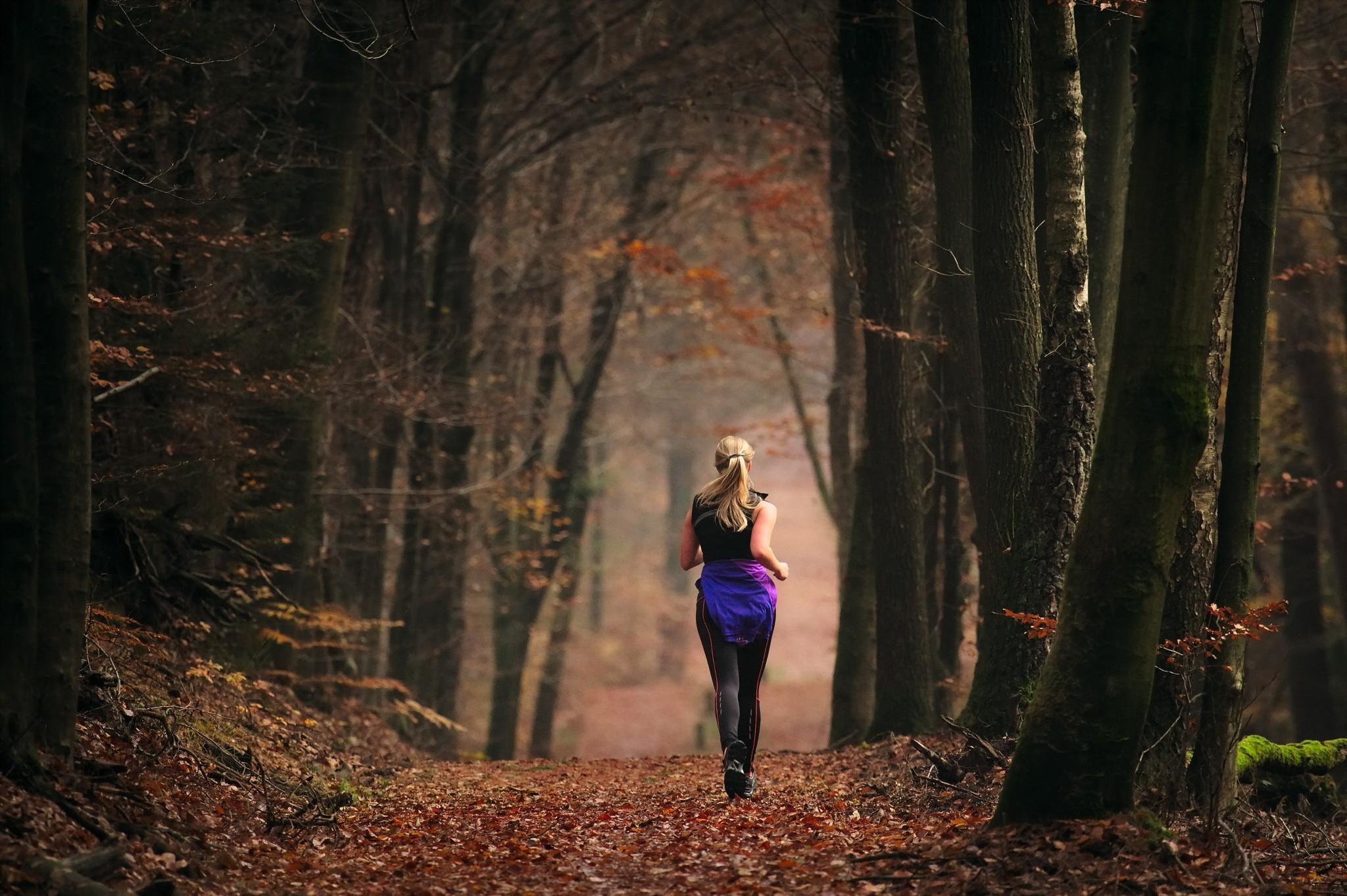 фото спиной в осеннем лесу вешают стены или