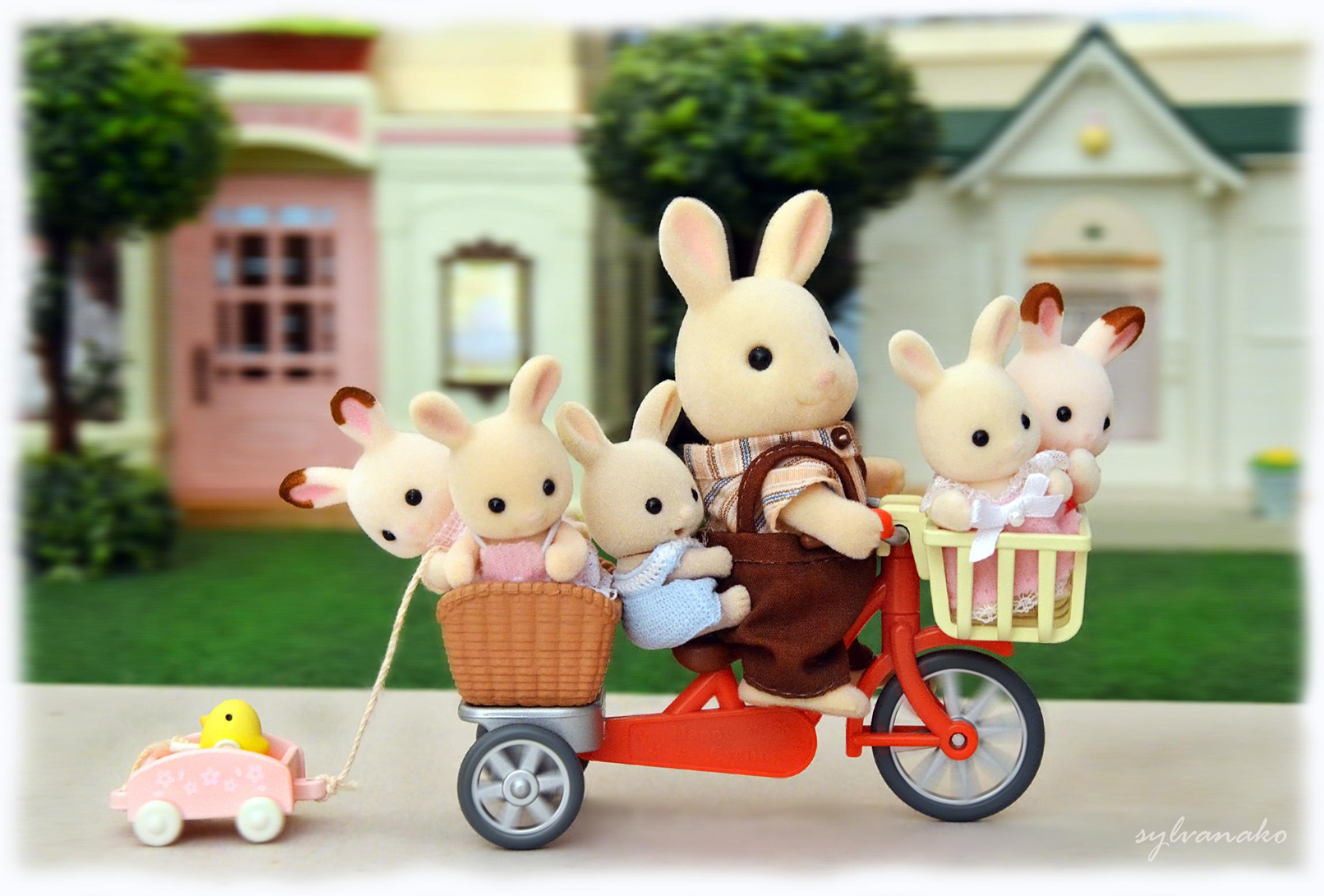 デスクトップ壁紙 スポーツ 木 おもちゃ 自転車 パーク 家族