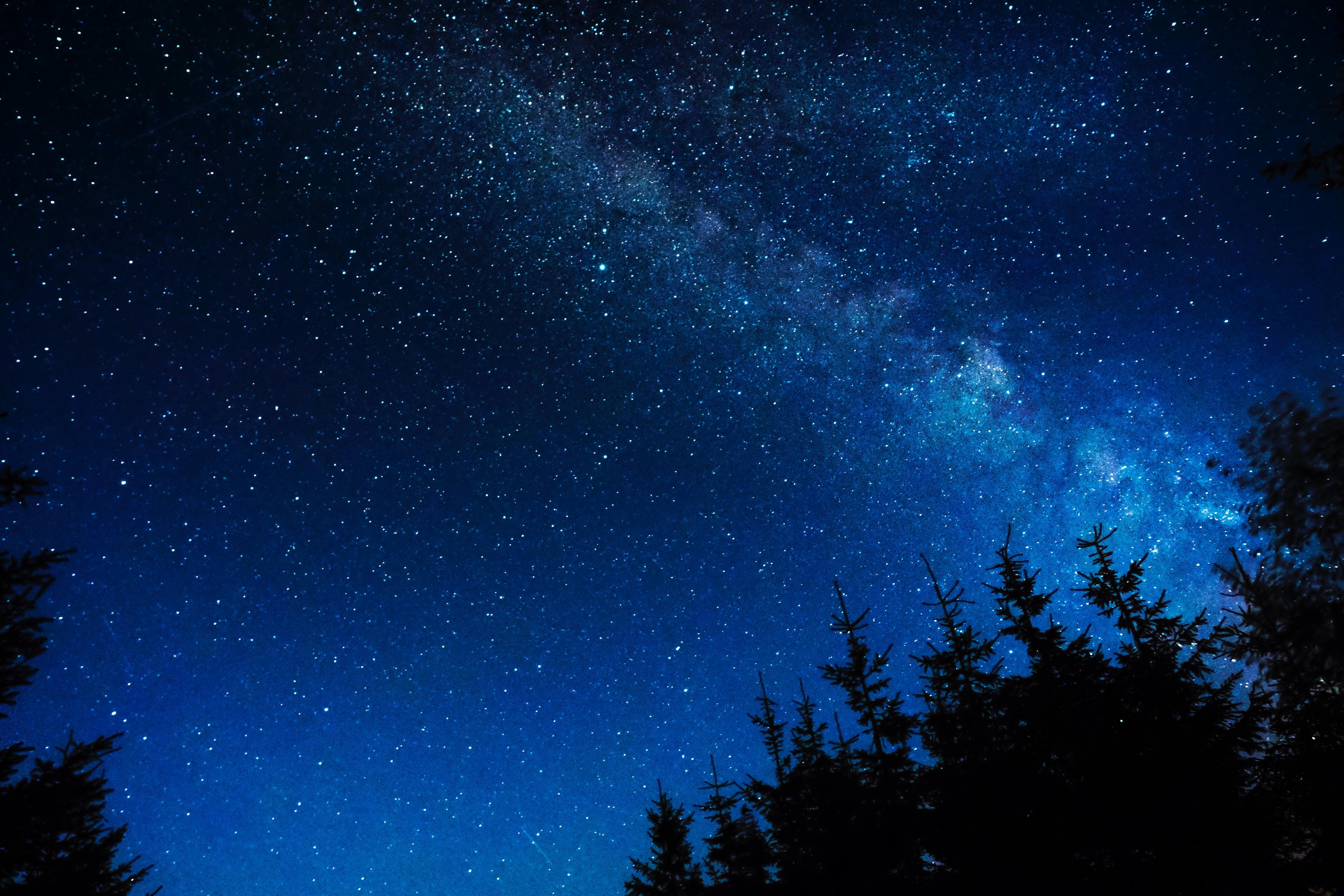 Cielo Stellato Sfondo.Sfondi Cielo Stellato Notte Stelle Luccichio Alberi