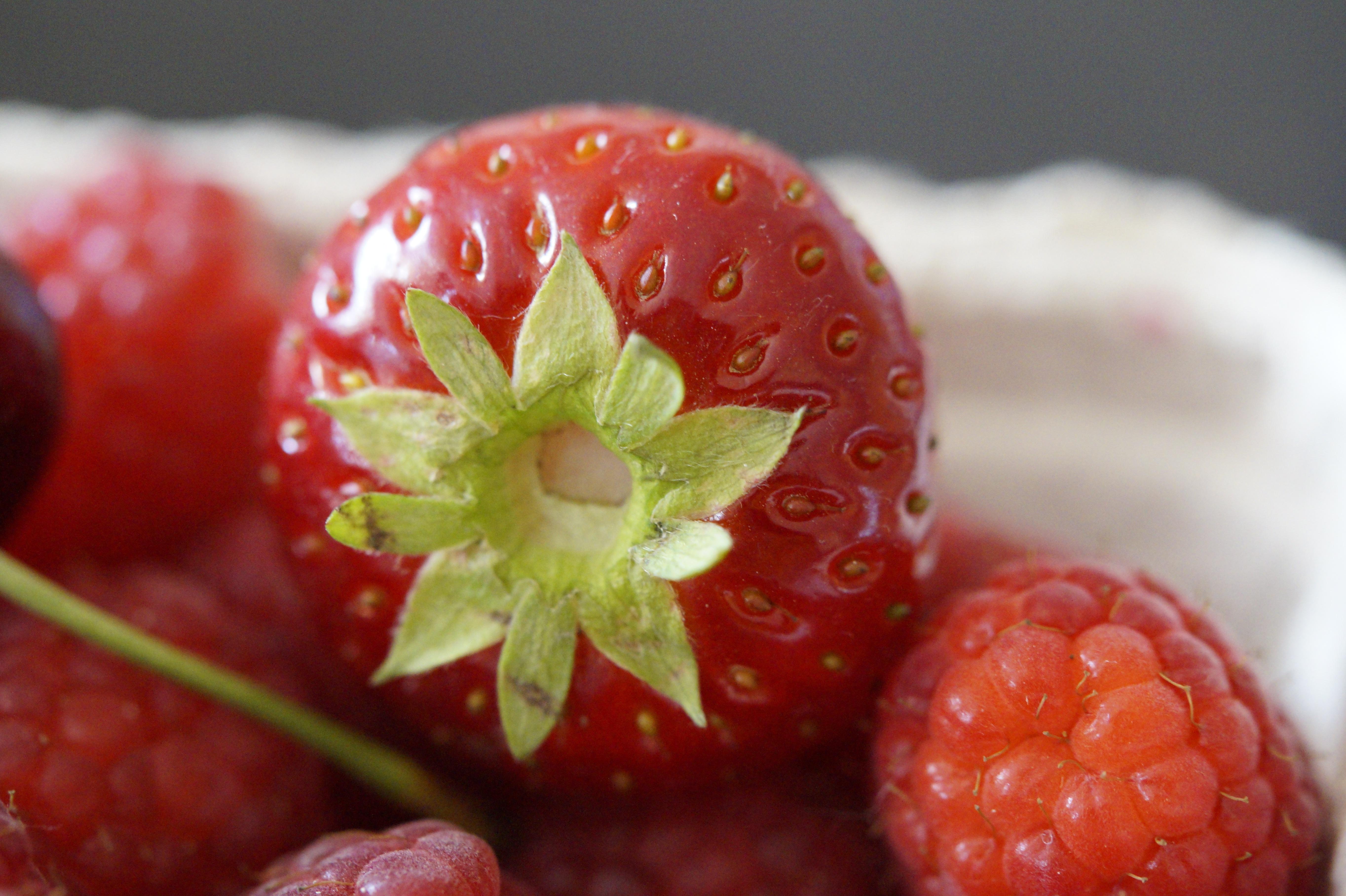 цветов живые картинки ягоды внутри находится живой