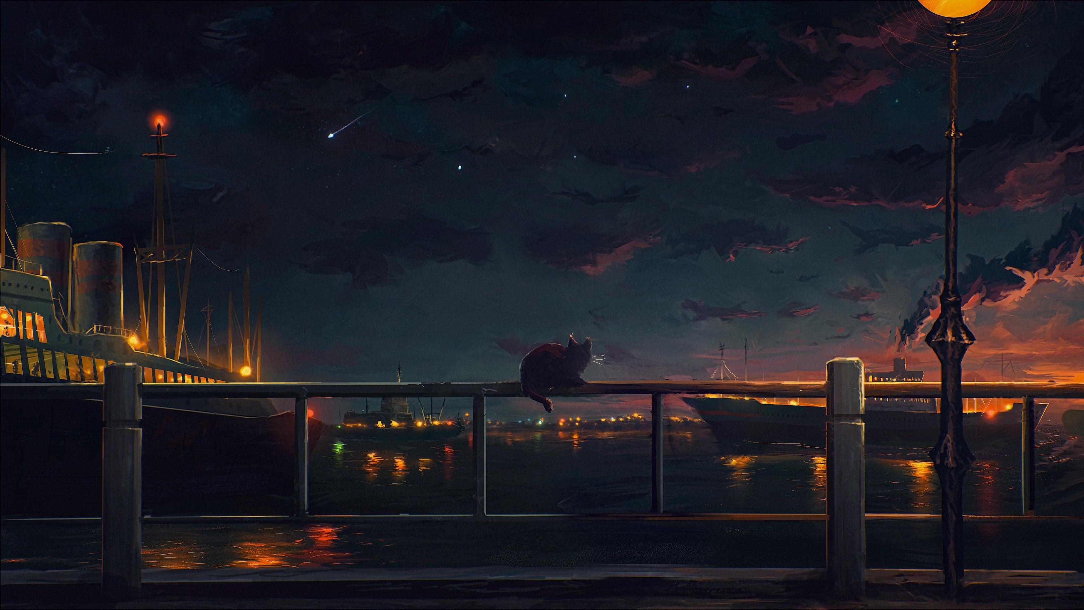 Street Light Ship Cat Sunset Cityscape Night Reflection Stars Evening Dusk Railing Dawn Lighting Darkness