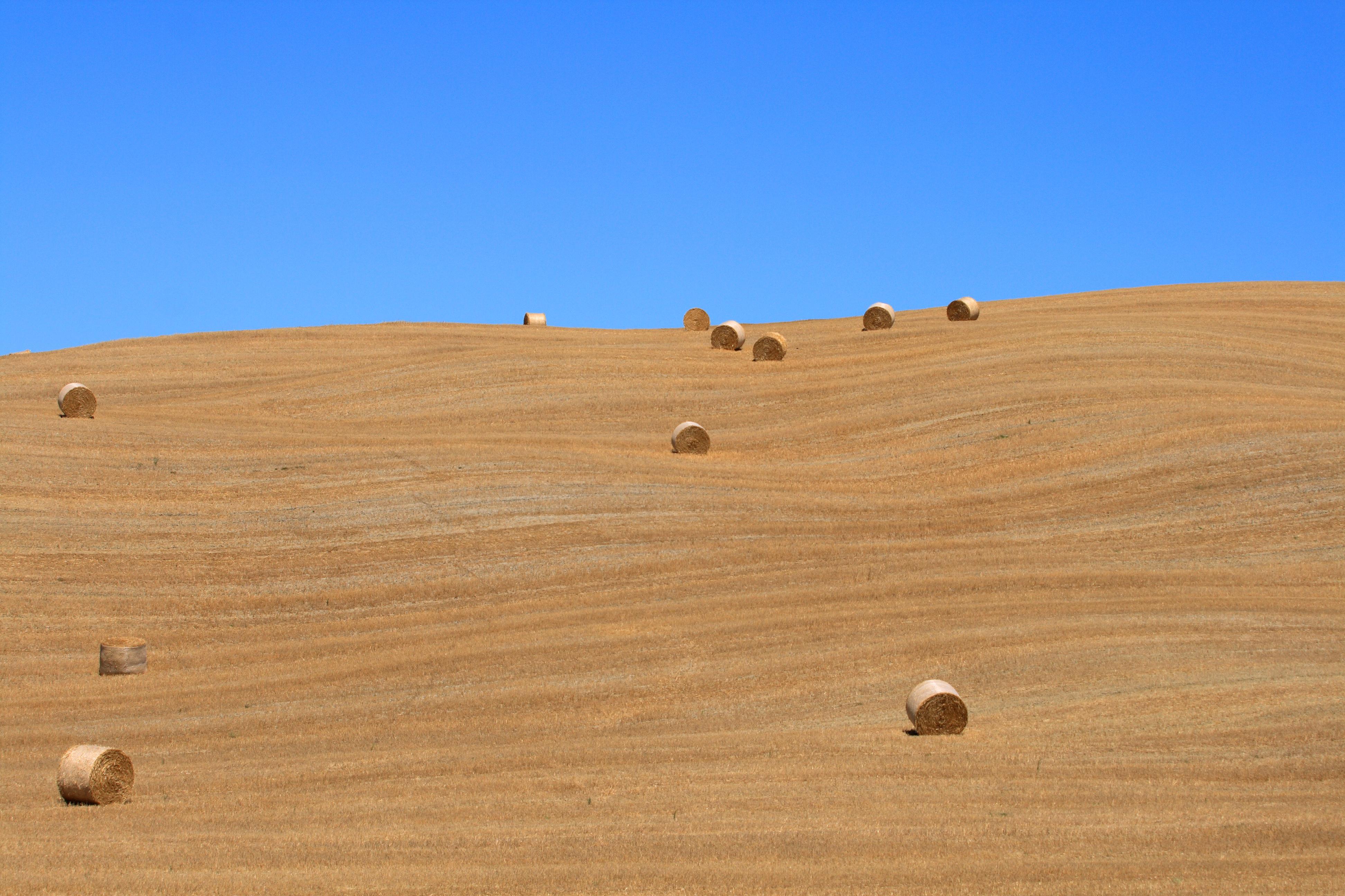 Fond d 39 cran t ciel italie champ lignes paysage for Agence lignes paysage