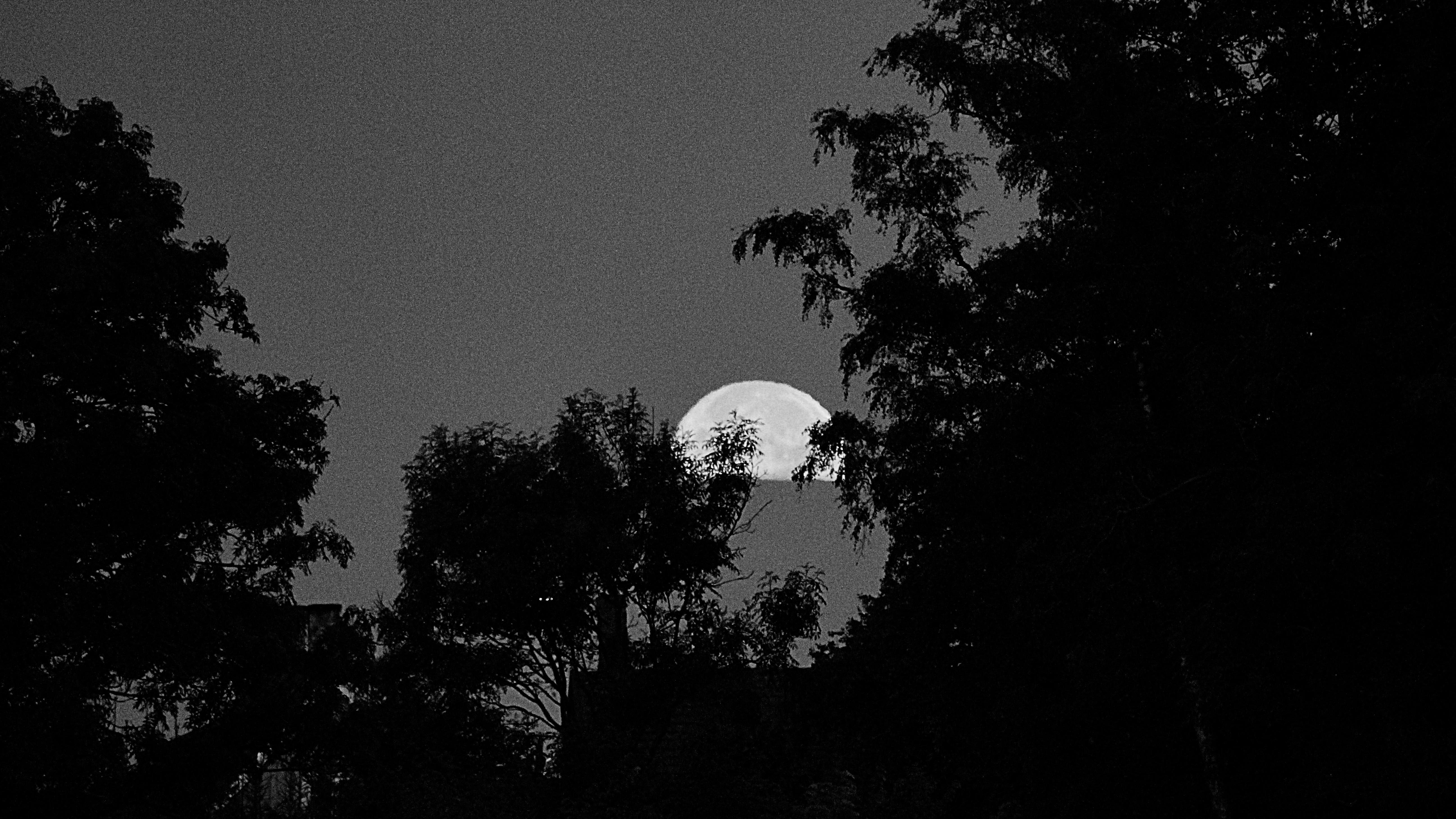 Wallpaper Sunlight Night Sky Silhouette Moon