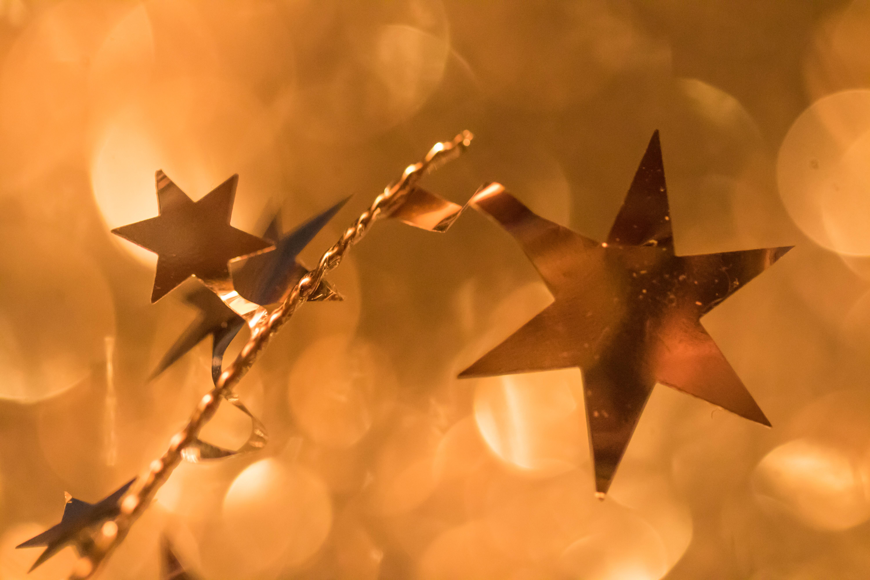 デスクトップ壁紙 日光 ブランチ クリスマスツリー ボケ