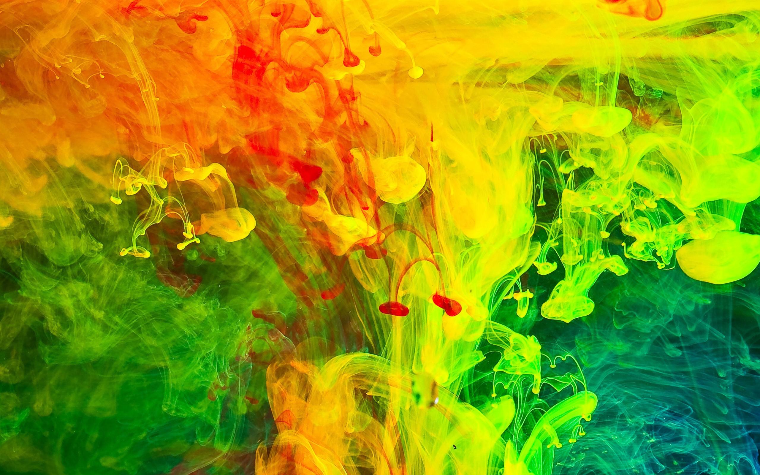 Wallpaper Sunlight Colorful Abstract Grass Artwork