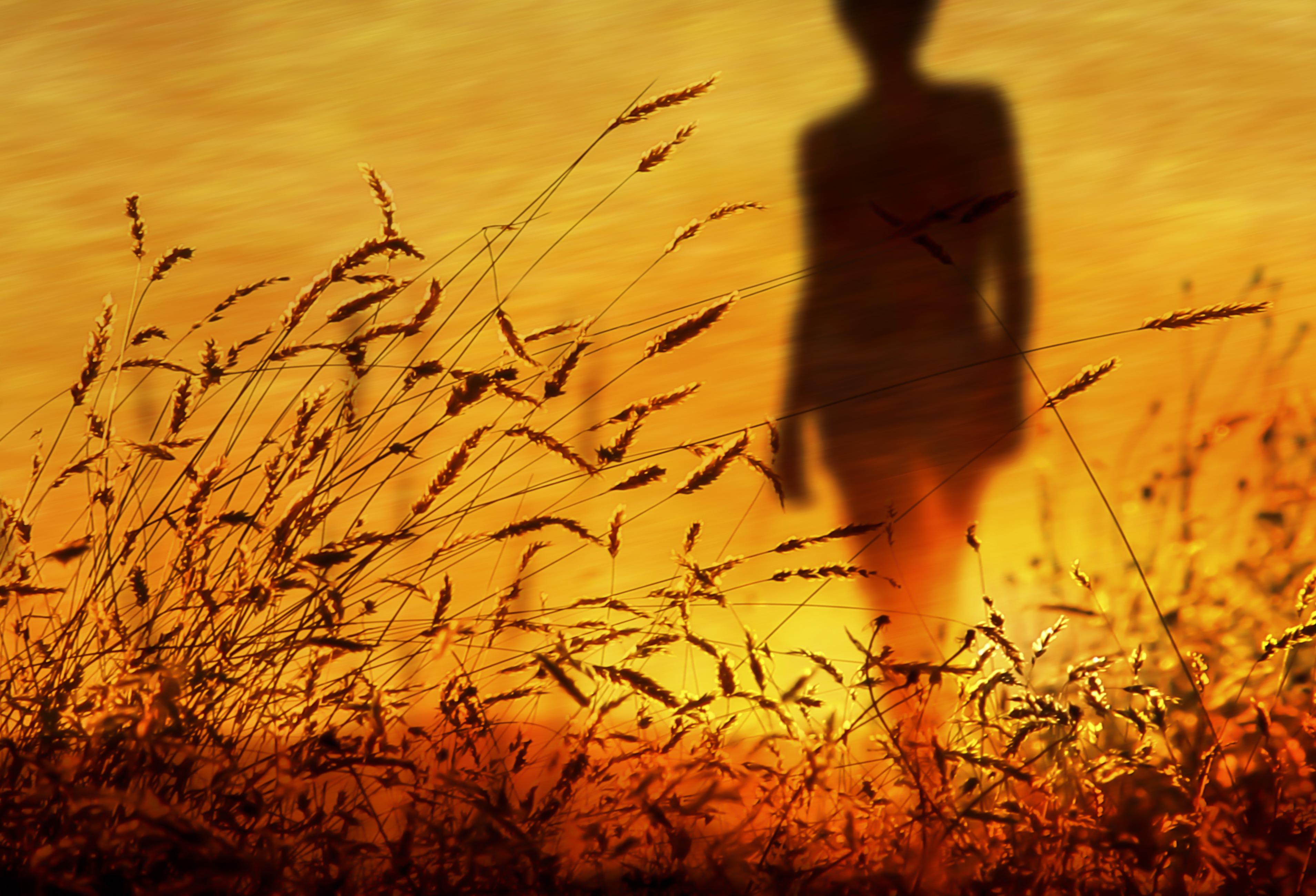 wallpaper sunlight colorful sunset nature reflection