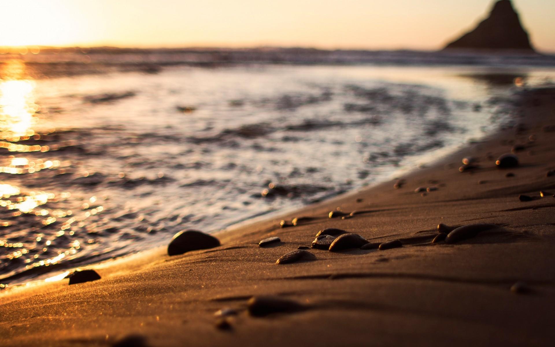 фото море солнце песок тигрят надолго одних