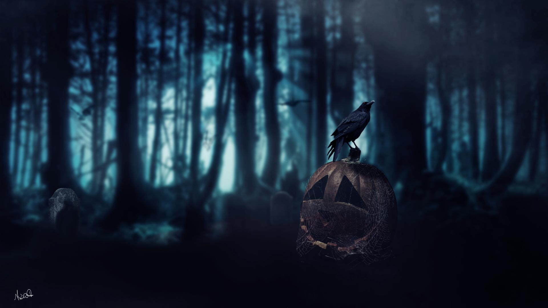 デスクトップ壁紙 日光 森林 ハロウィン かぼちゃ カラス 死