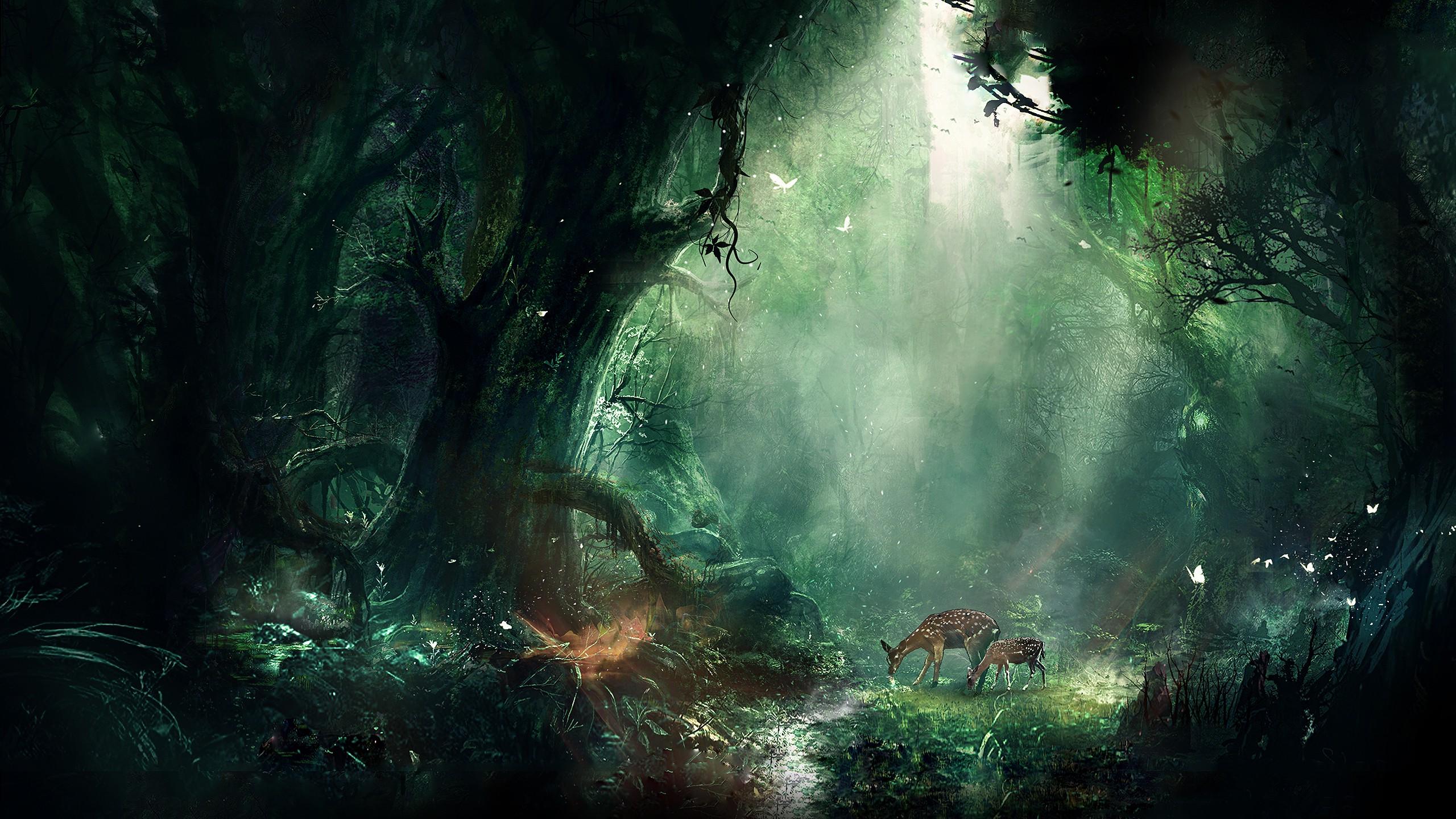 Wallpaper Sunlight Forest Animals Fantasy Art Nature