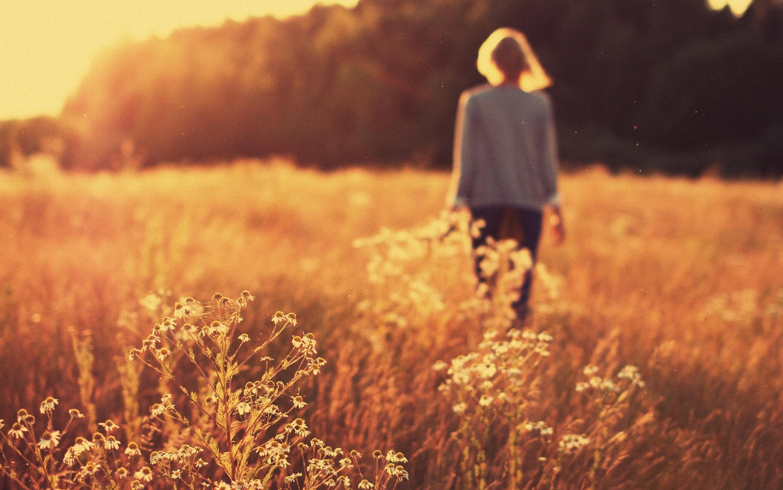 Картинка девушка с каре со спины в поле