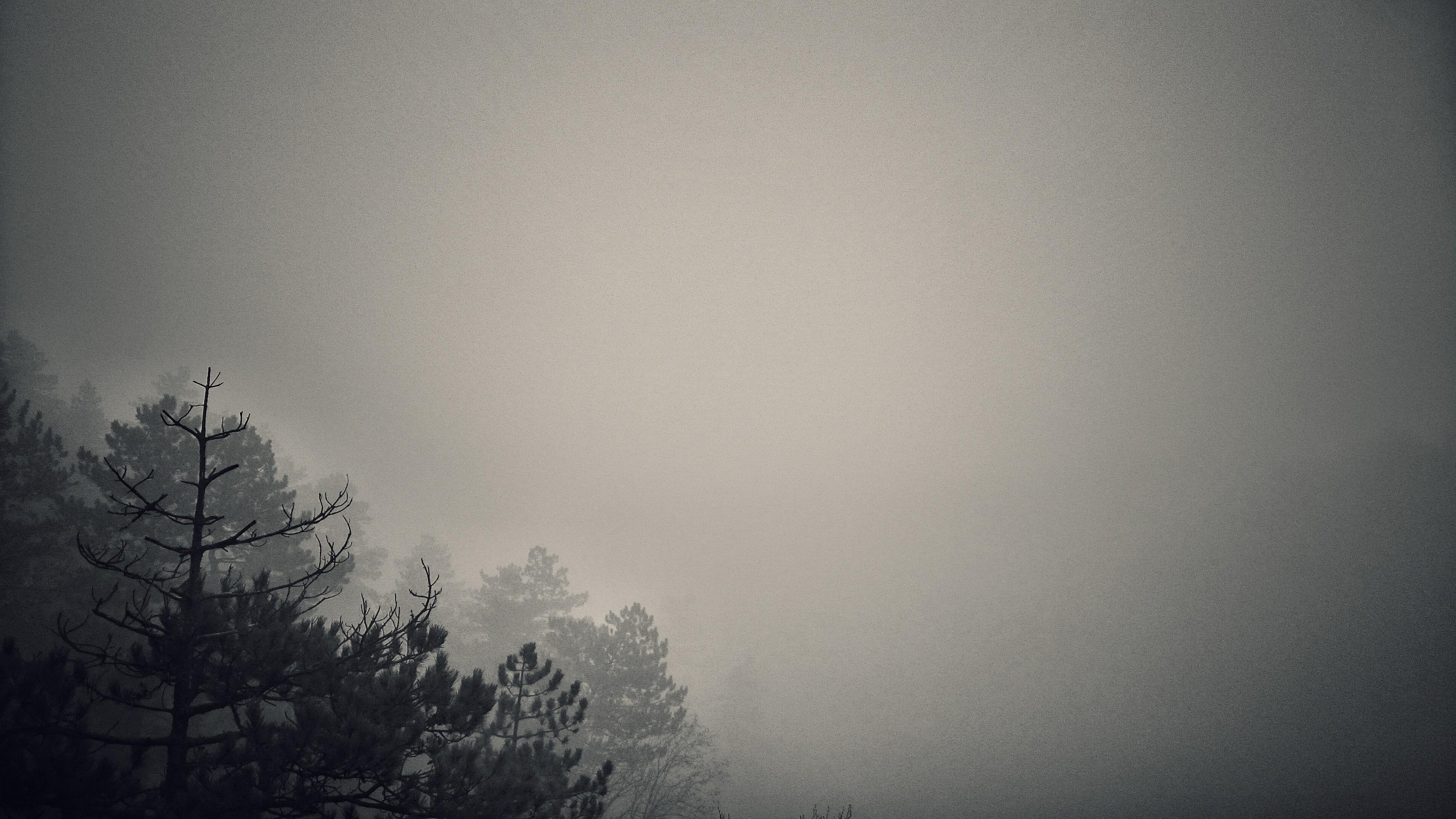 Картинка минимализм серый