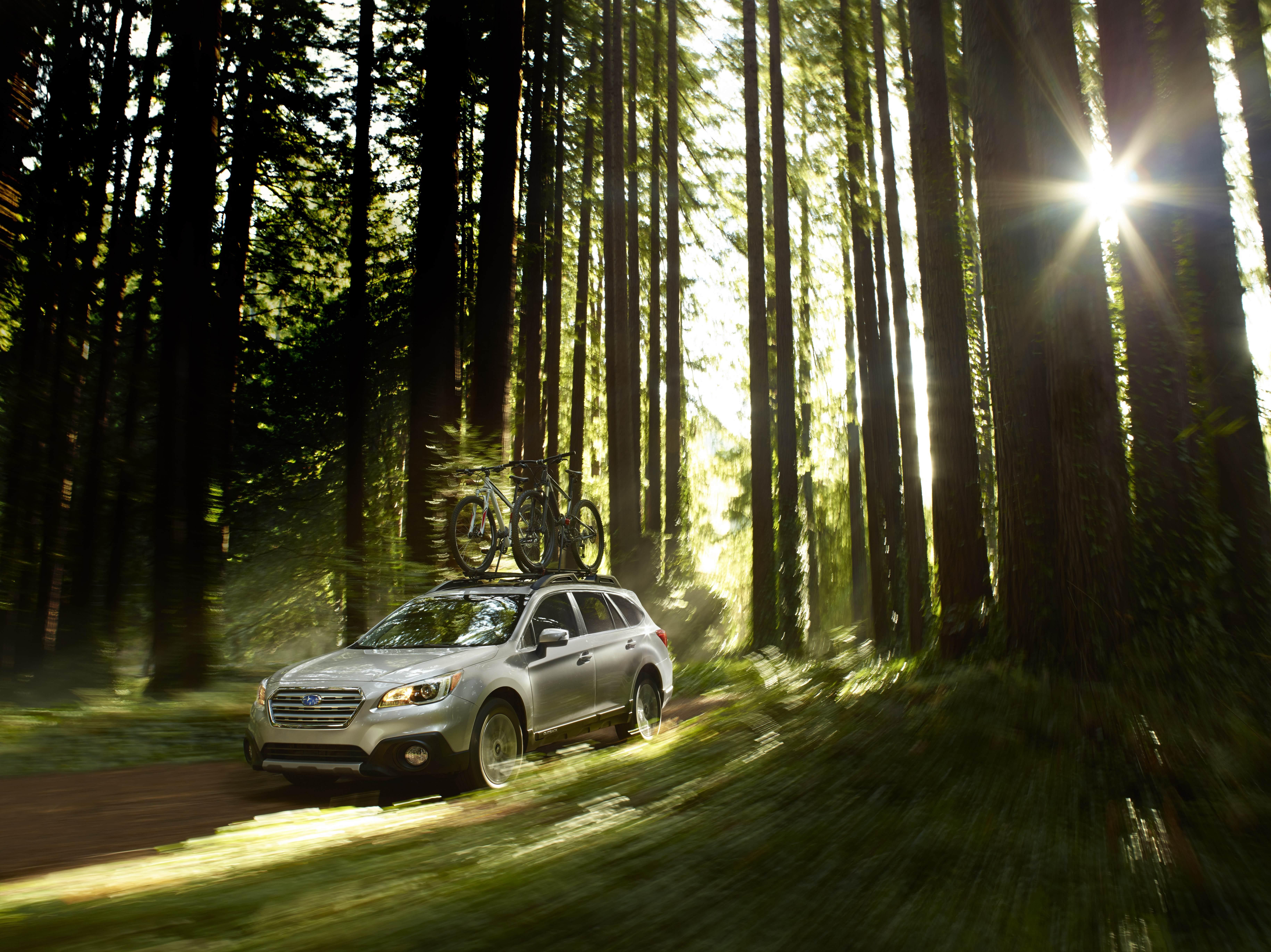 здесь машина в лесу картинка для того чтобы