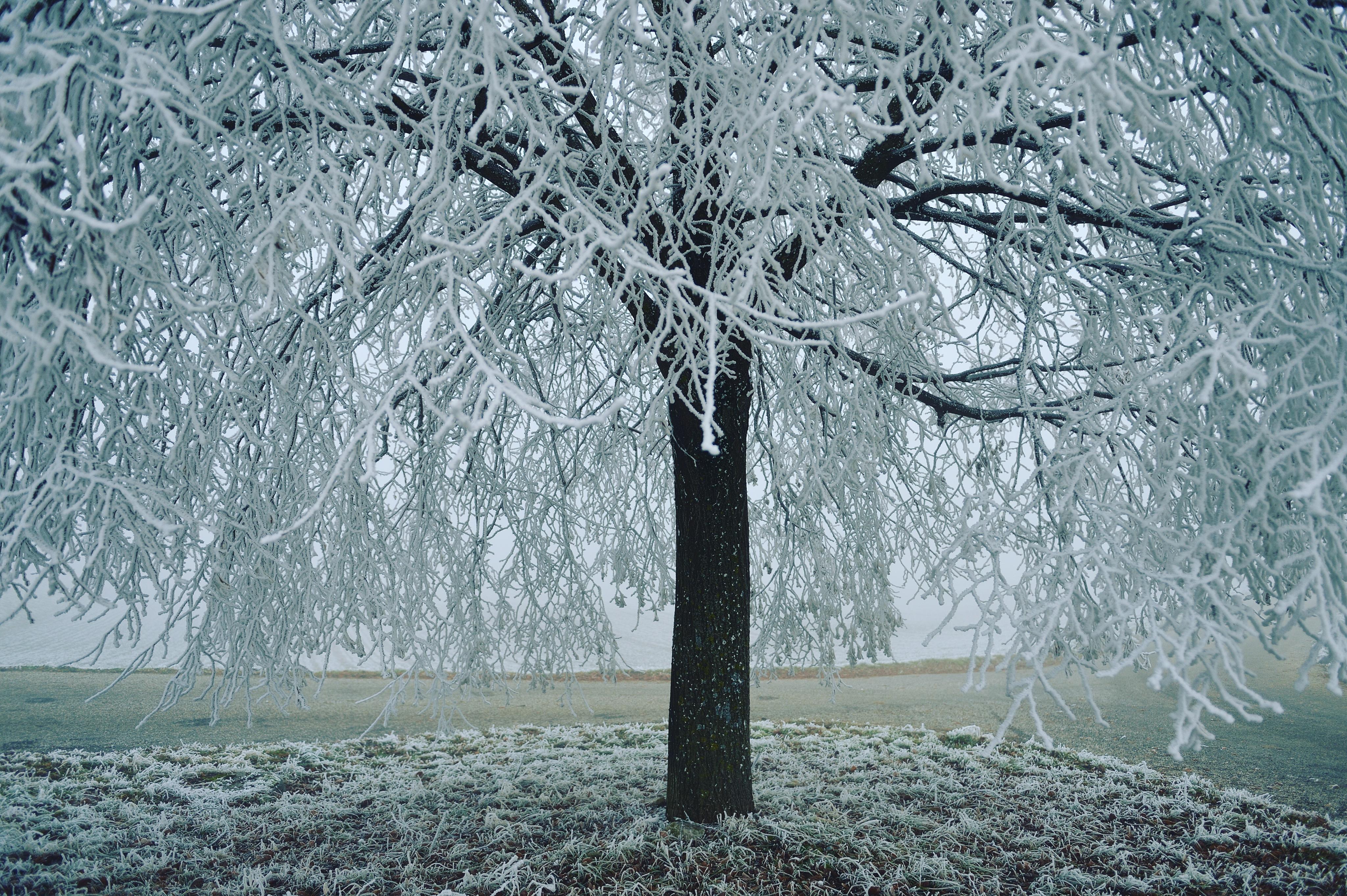 расписание, картинки инея дождя и снега это