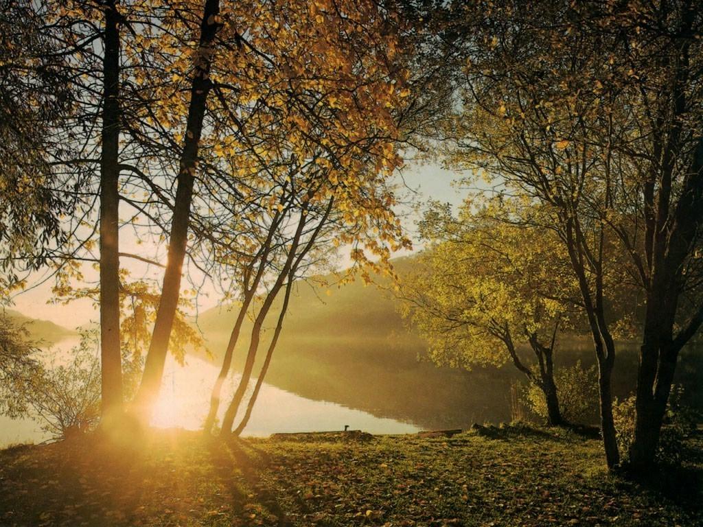 Картинки с добрым утром про природу осень касается