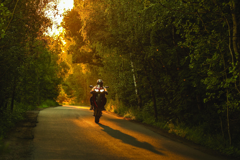 Sunlight Forest Sunset Night Nature Motorcycle Road Green Evening Morning Wheelie Honda Cbr  Rr Light