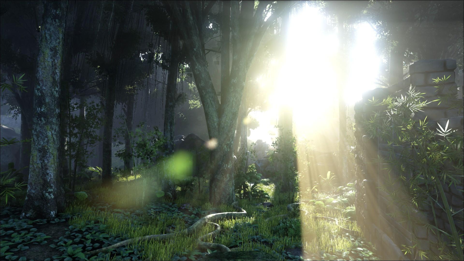 Wallpaper : sunlight, forest, video games, nature, green