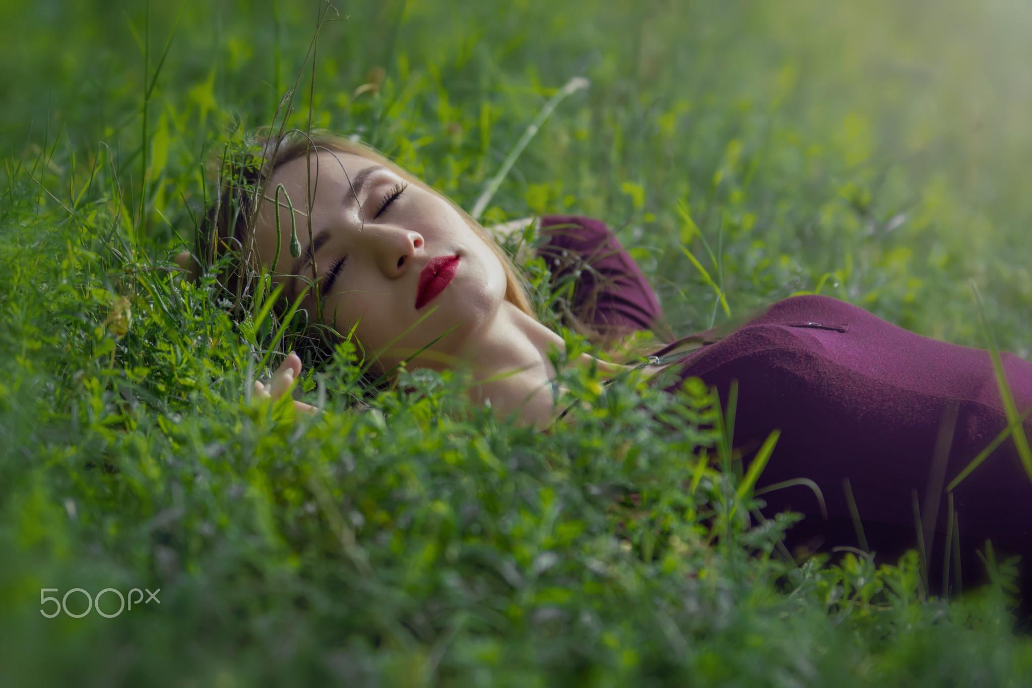 тушенку смотрят на звезды лежа в траве фото удобным хранилищем