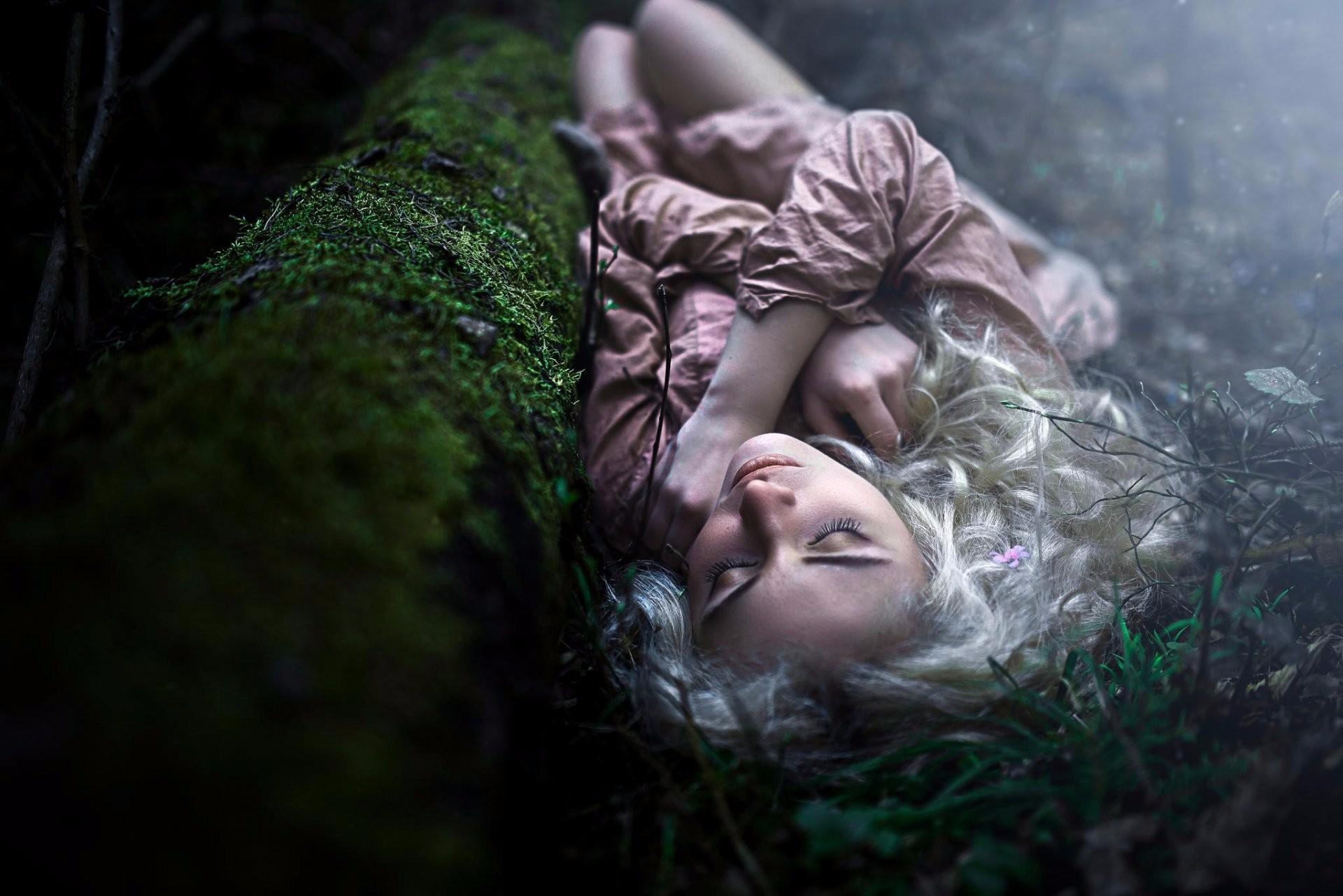 переименовала фото спят в лесу него стержневой