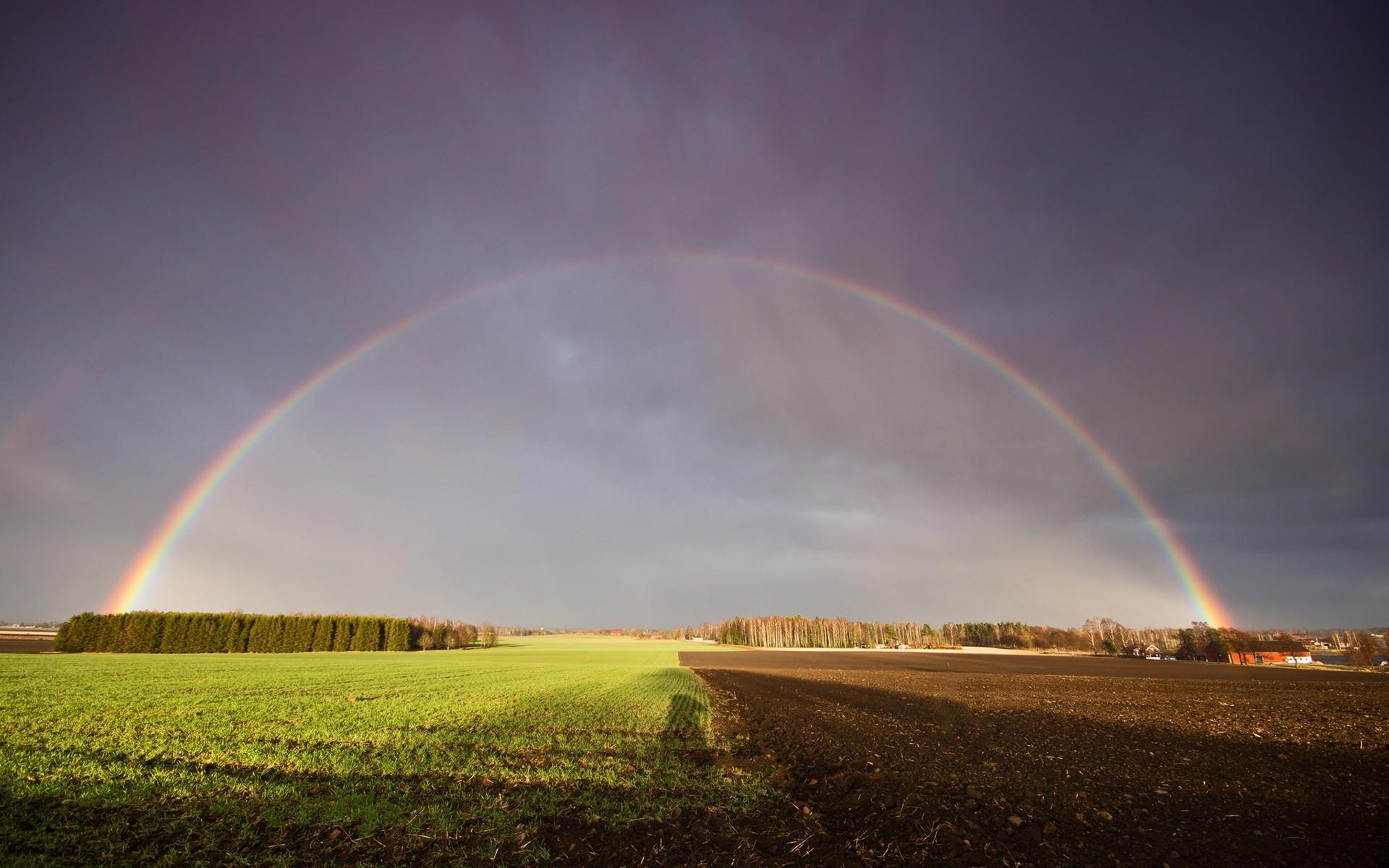 Картинка поле с радугой