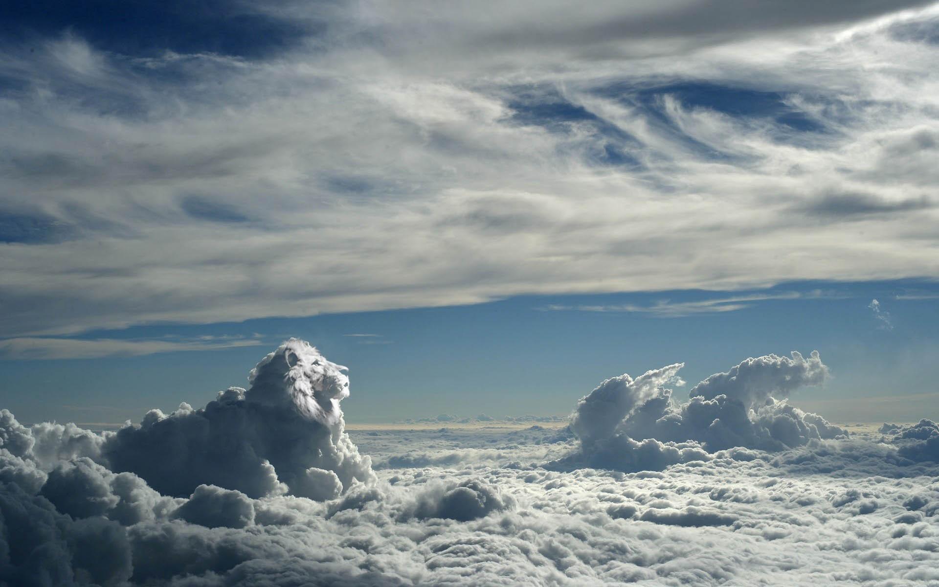 Fond d'écran : lumière du soleil, colline, ciel, neige, hiver, des nuages, Lion, horizon ...
