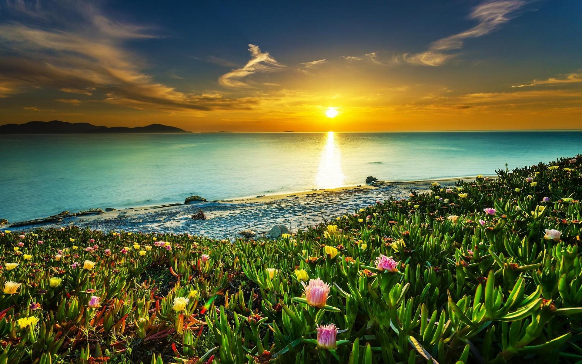 картинка море солнечный день приехала, чтобы