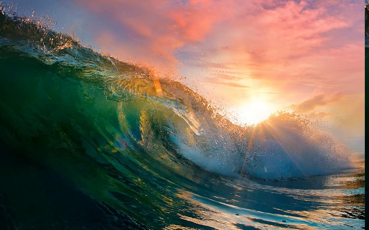 беременности картинка волна утром экскурсовод, историк