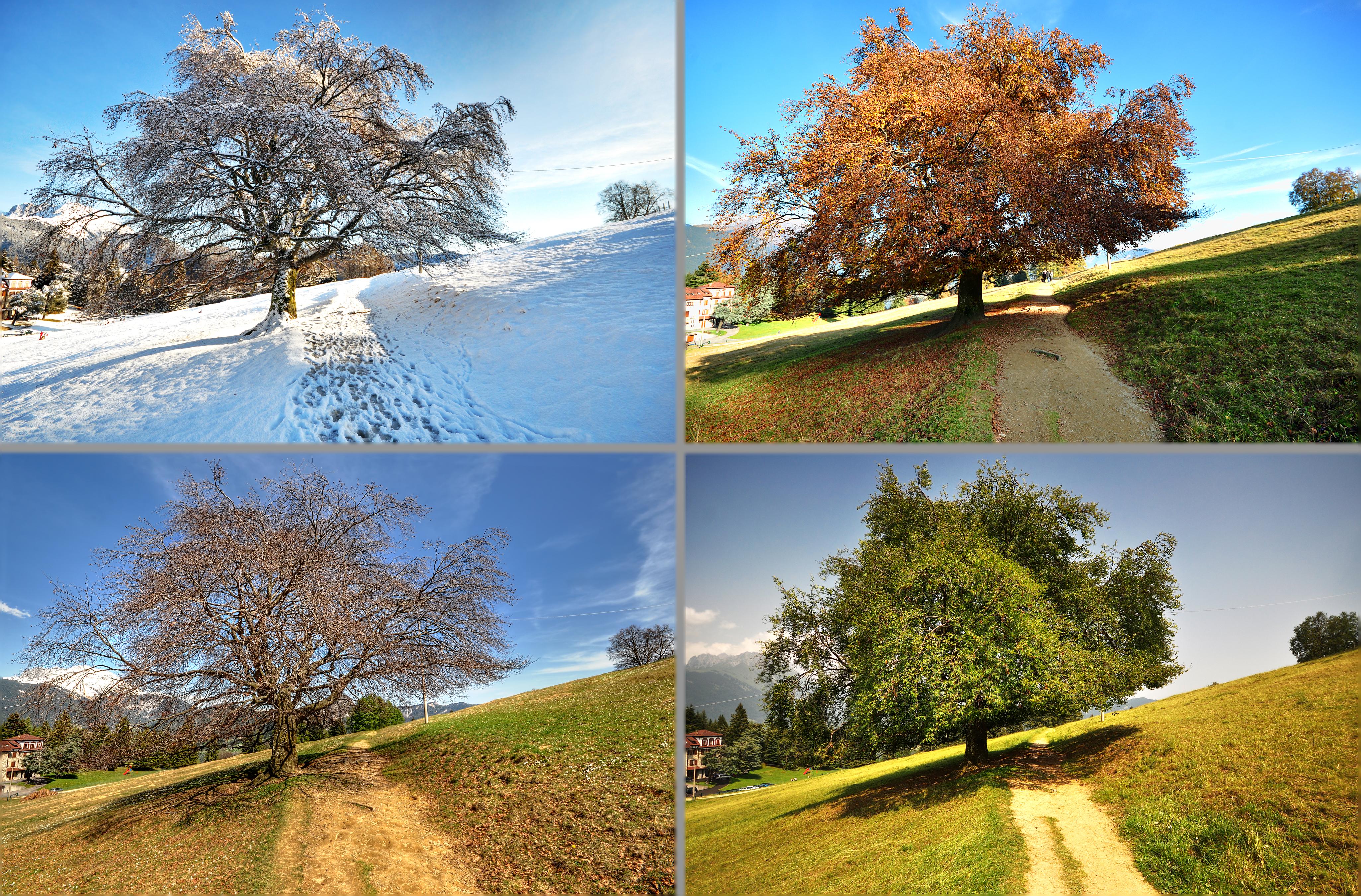 опыты, тимирязев картинки погоды в разное время года отверстия