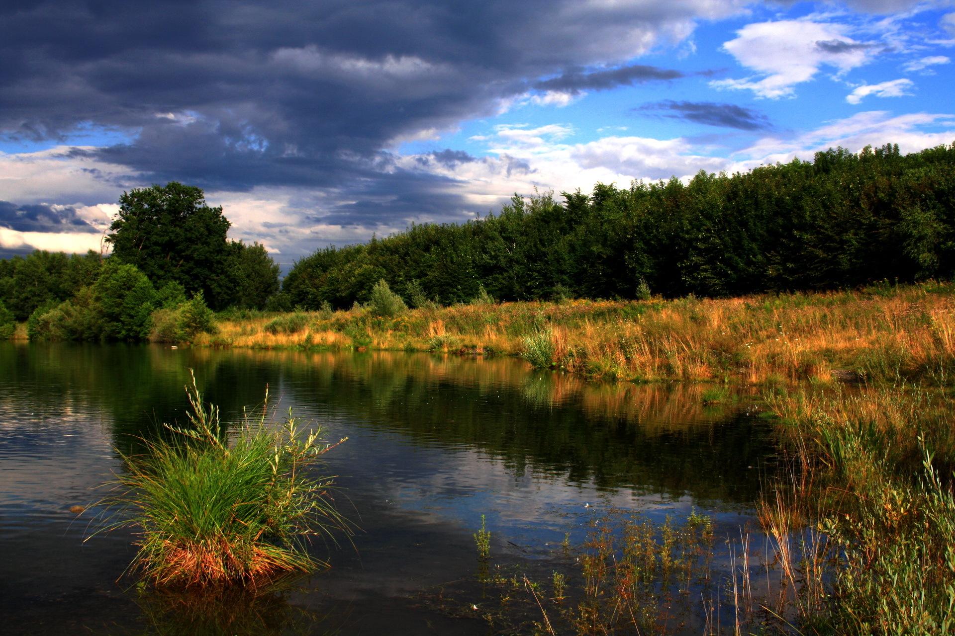природа россии летом фото в высоком качестве