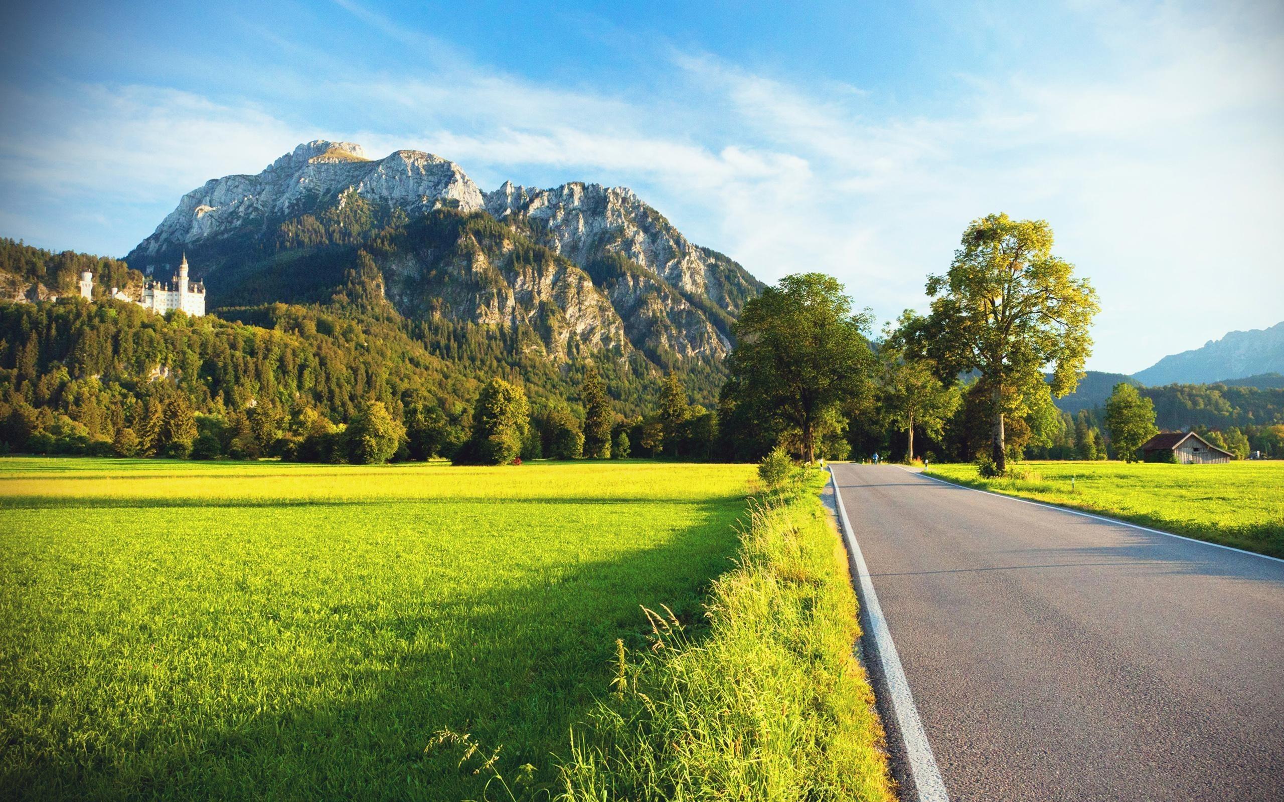 стручки красивые картинки дорога пейзаж днём