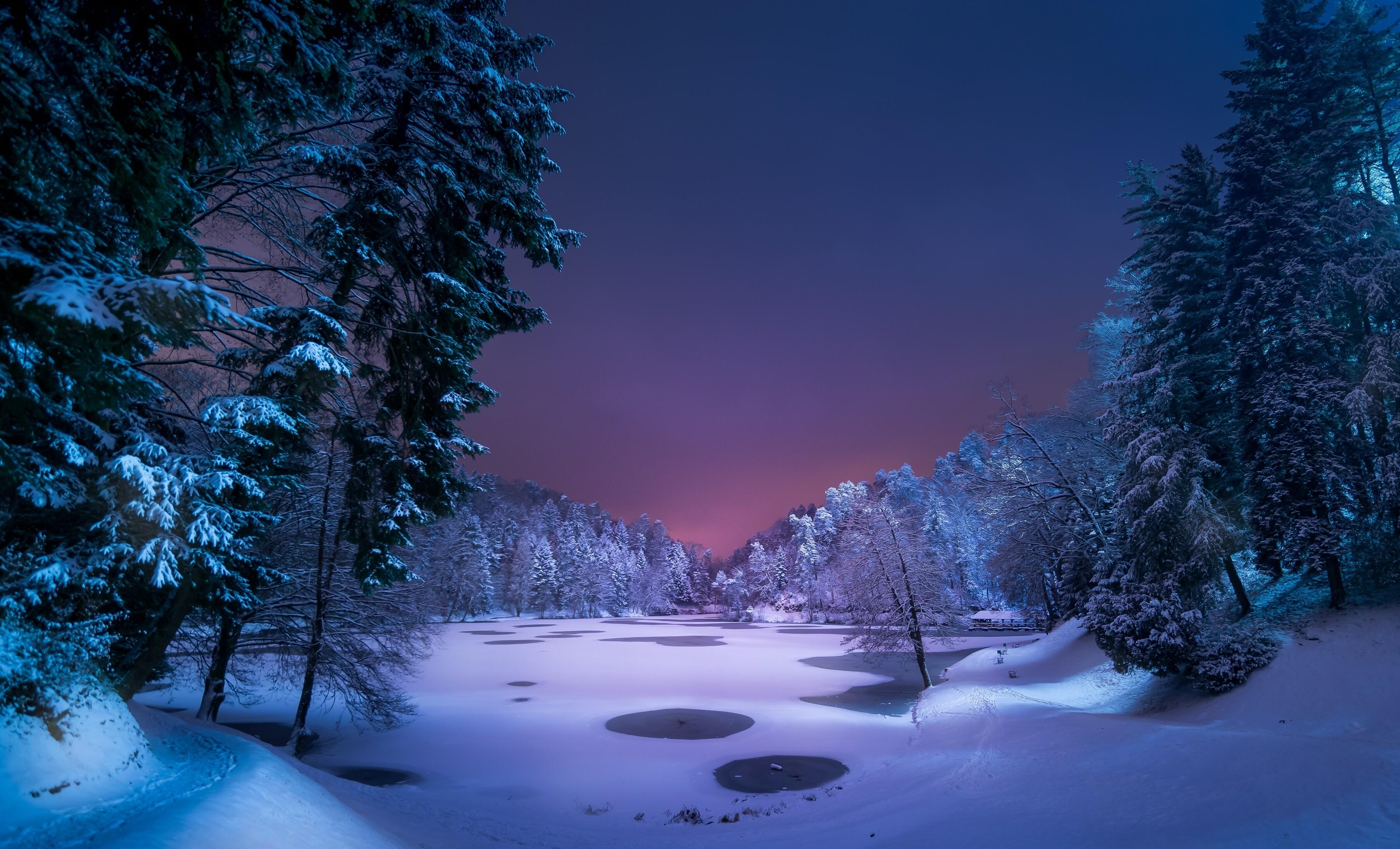 Fond d 39 cran lumi re du soleil paysage for t nuit - Photos de neige gratuites ...