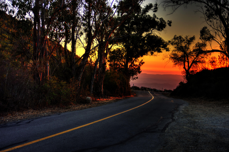 Wallpaper Sunlight Landscape Forest Sunset Hill Nature Car