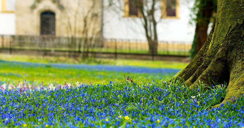 Sfondi luce del sole paesaggio verde primavera for Wallpaper hd paesaggi