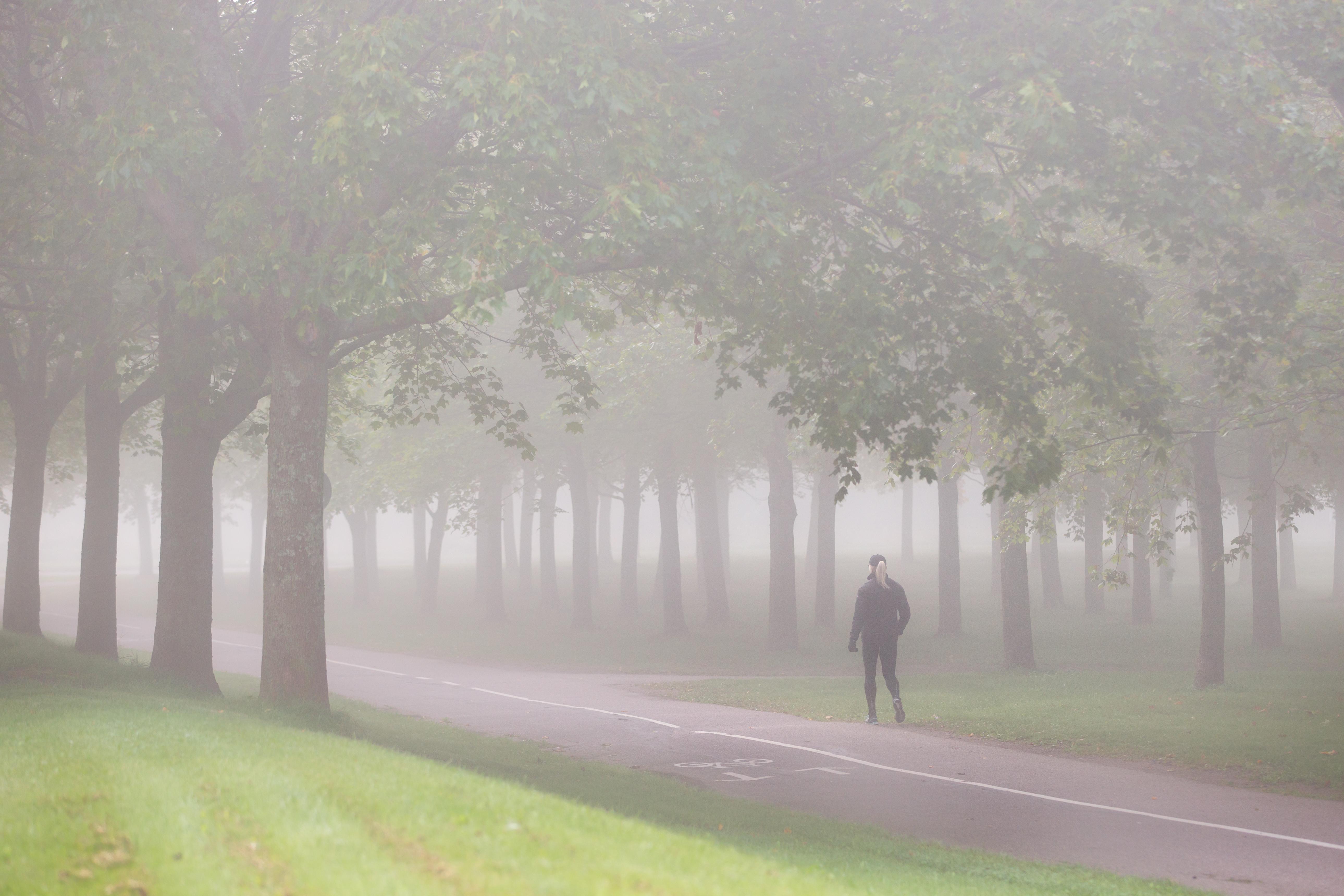 Красивое фото девушек в тумане