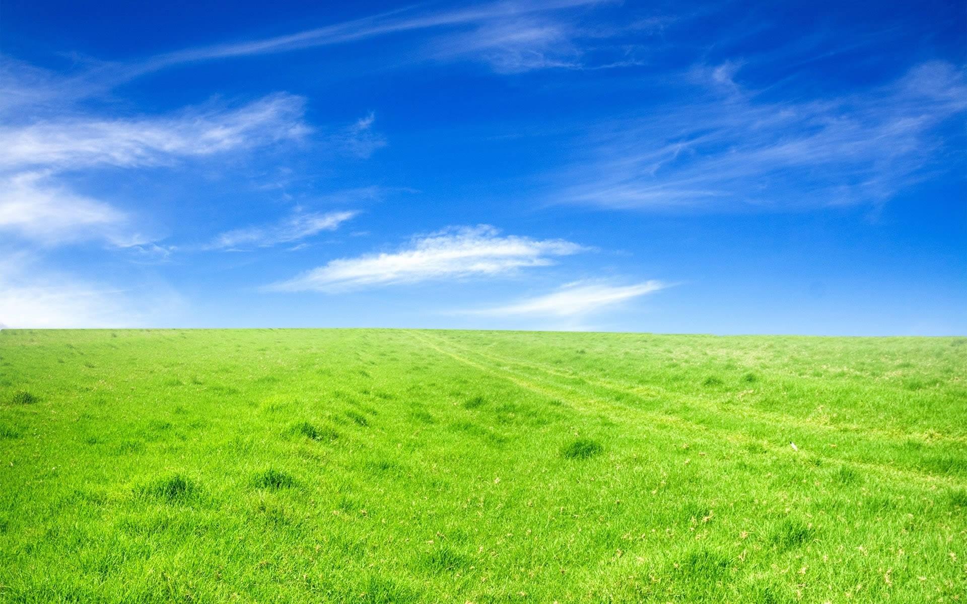 Wallpaper : sunlight, landscape, hill, sky, field, horizon