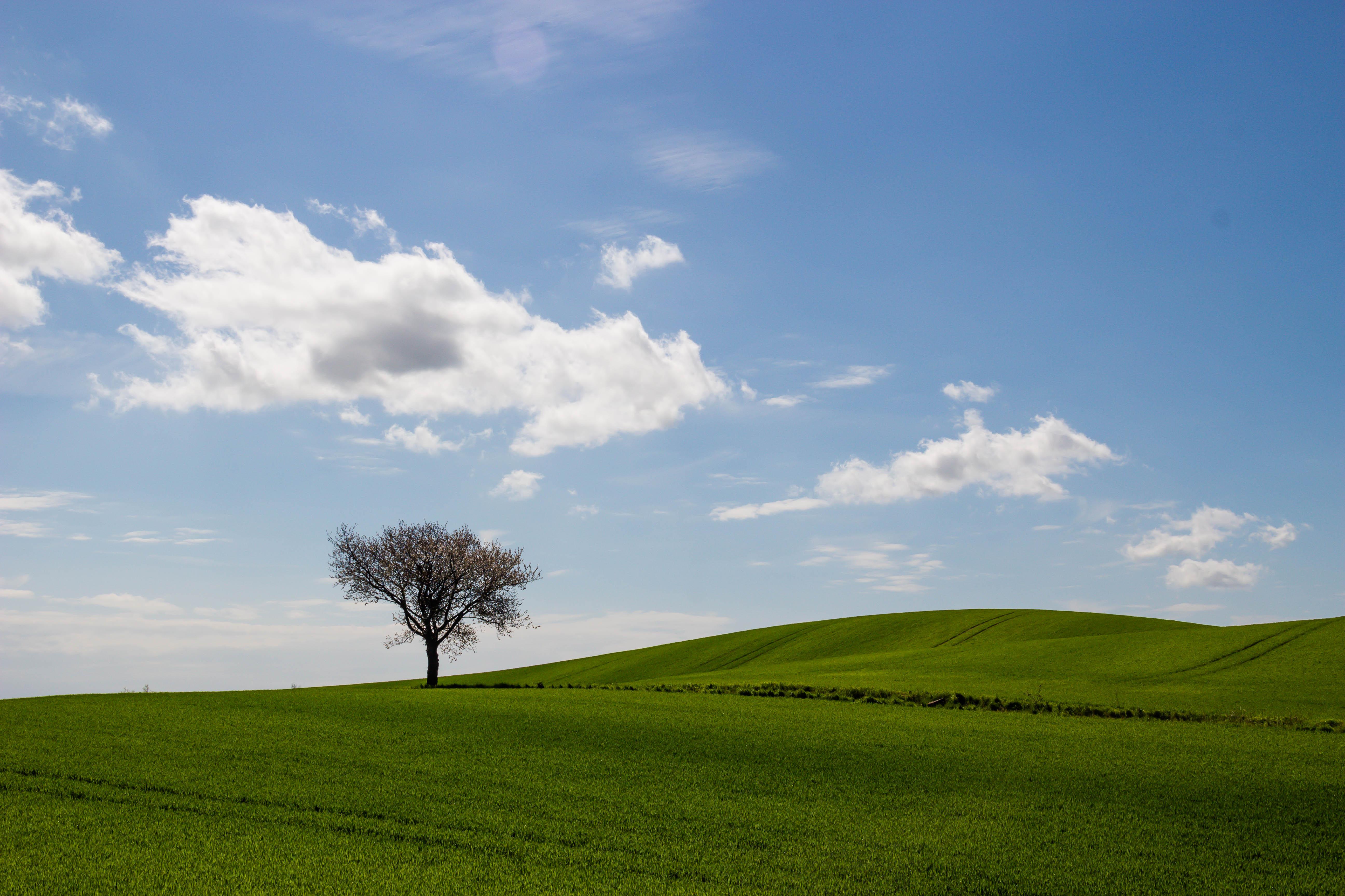 Fond d 39 cran lumi re du soleil paysage colline la for Agence horizon paysage