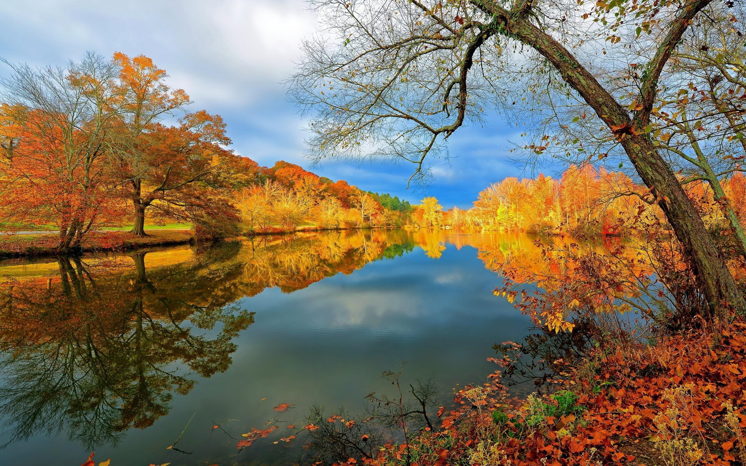 Обои на рабочий стол золотая осень озеро