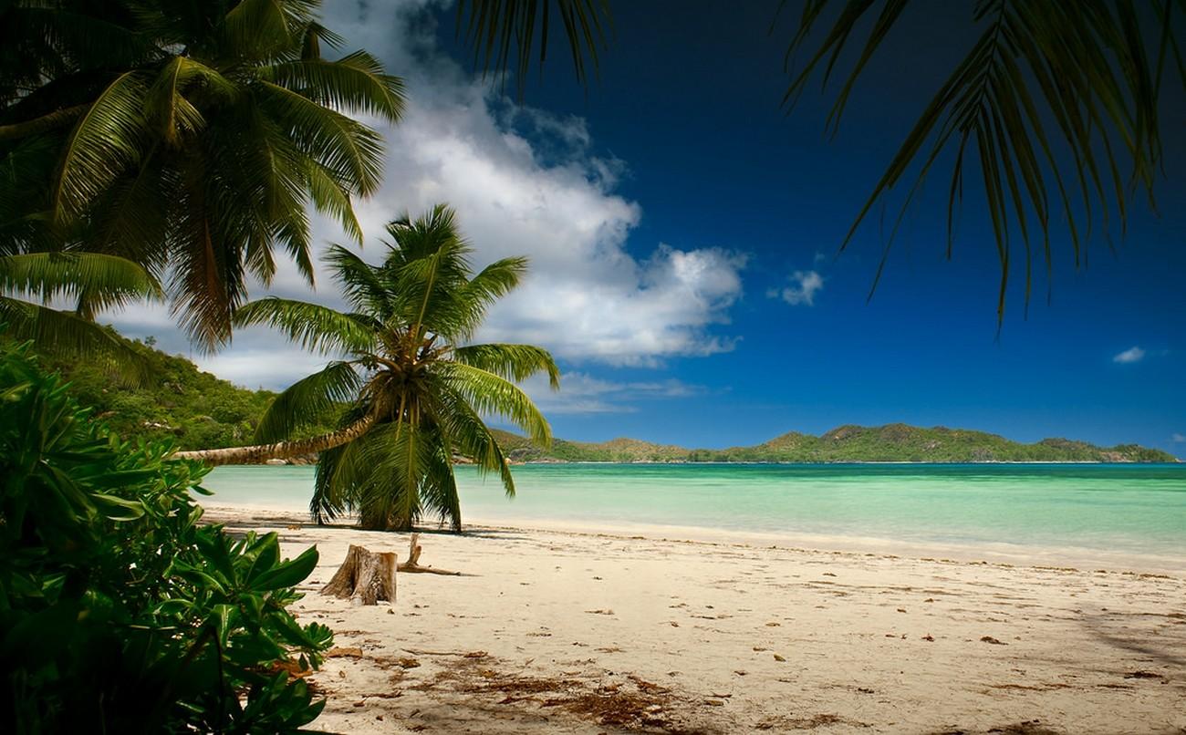 Tropical Paradise Beach Coast Sea Blue Emerald Ocean Palm: Wallpaper : Sunlight, Landscape, Sea, Bay, Nature, Shore