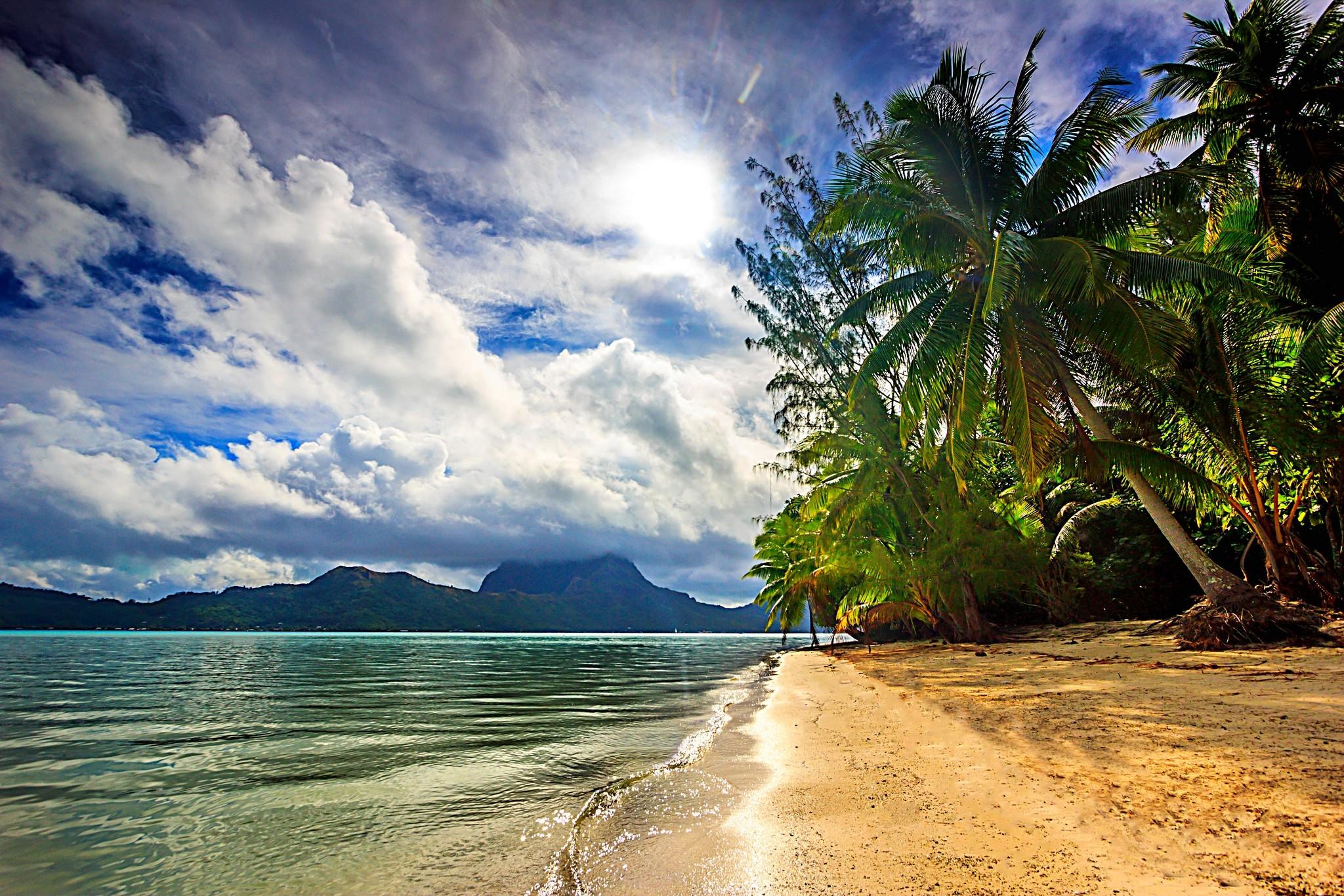 беркутов фото тропических берегов сопку можно